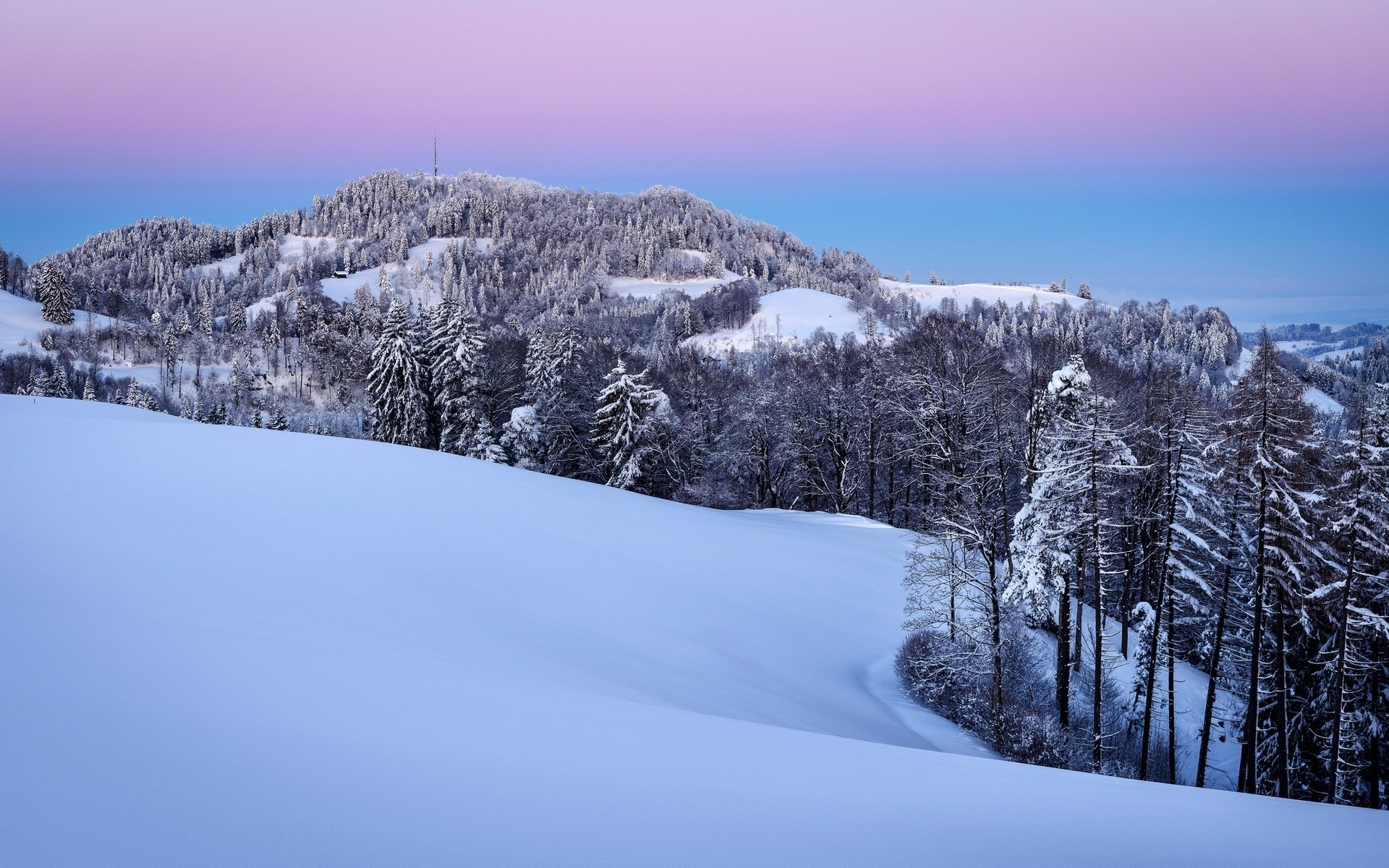 Snowy Hill Forest Pink Sky wallpapers | Snowy Hill Forest Pink Sky ...