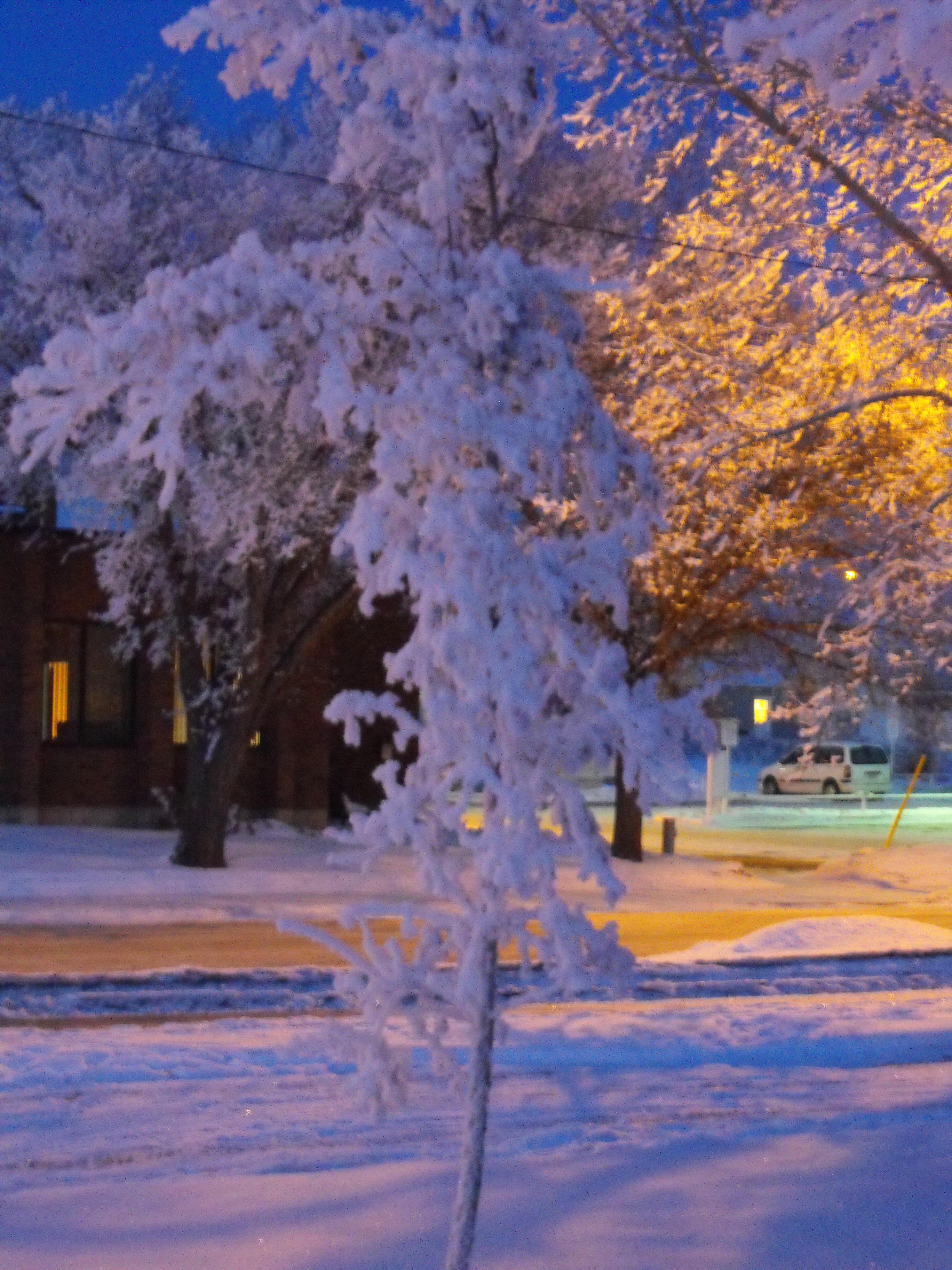 Snowy street photo