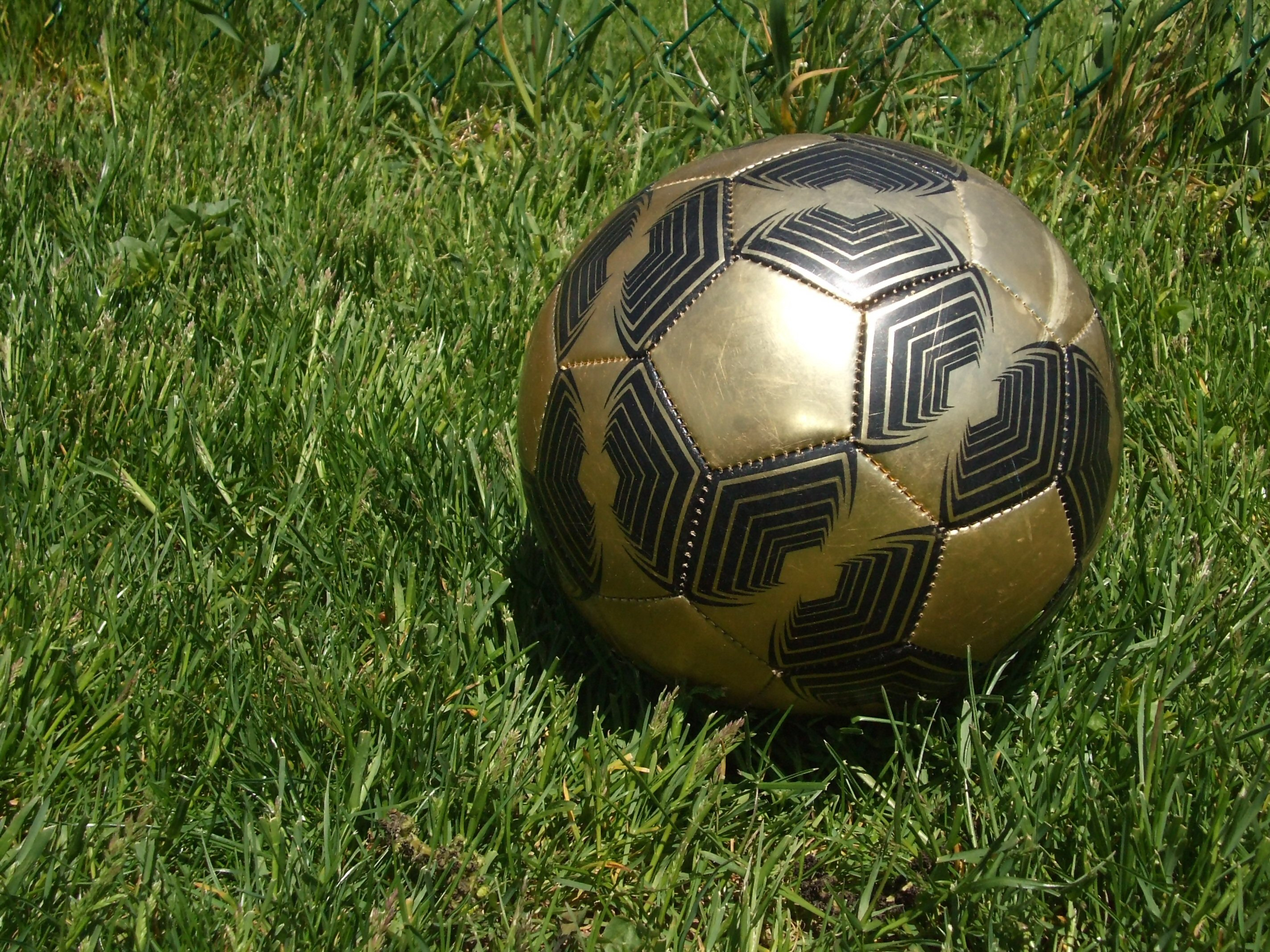 Soccer Ball, Ball, Black, Competition, Football, HQ Photo