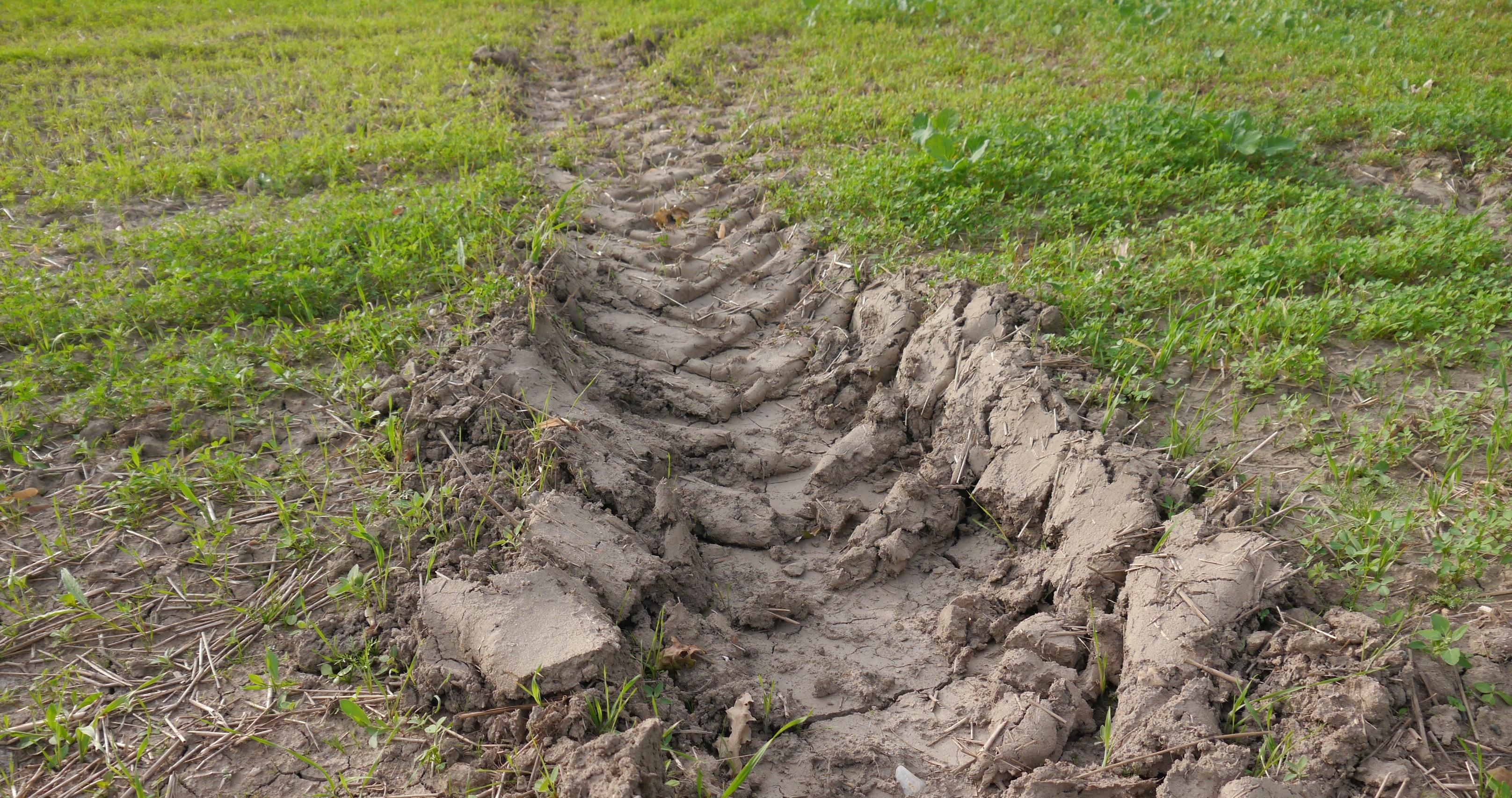 Soil compaction | Umweltbundesamt
