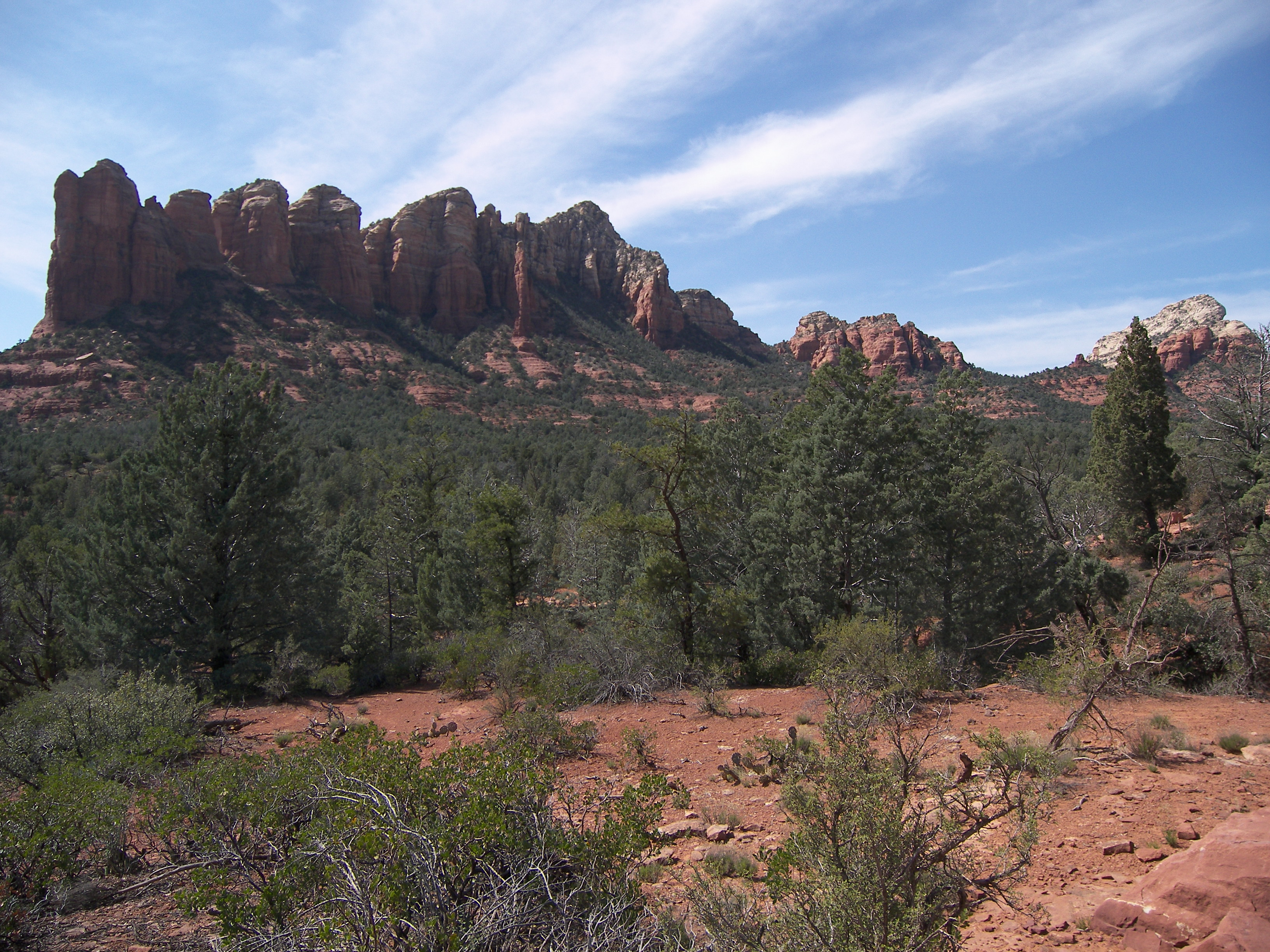 Soldiers pass trail photo