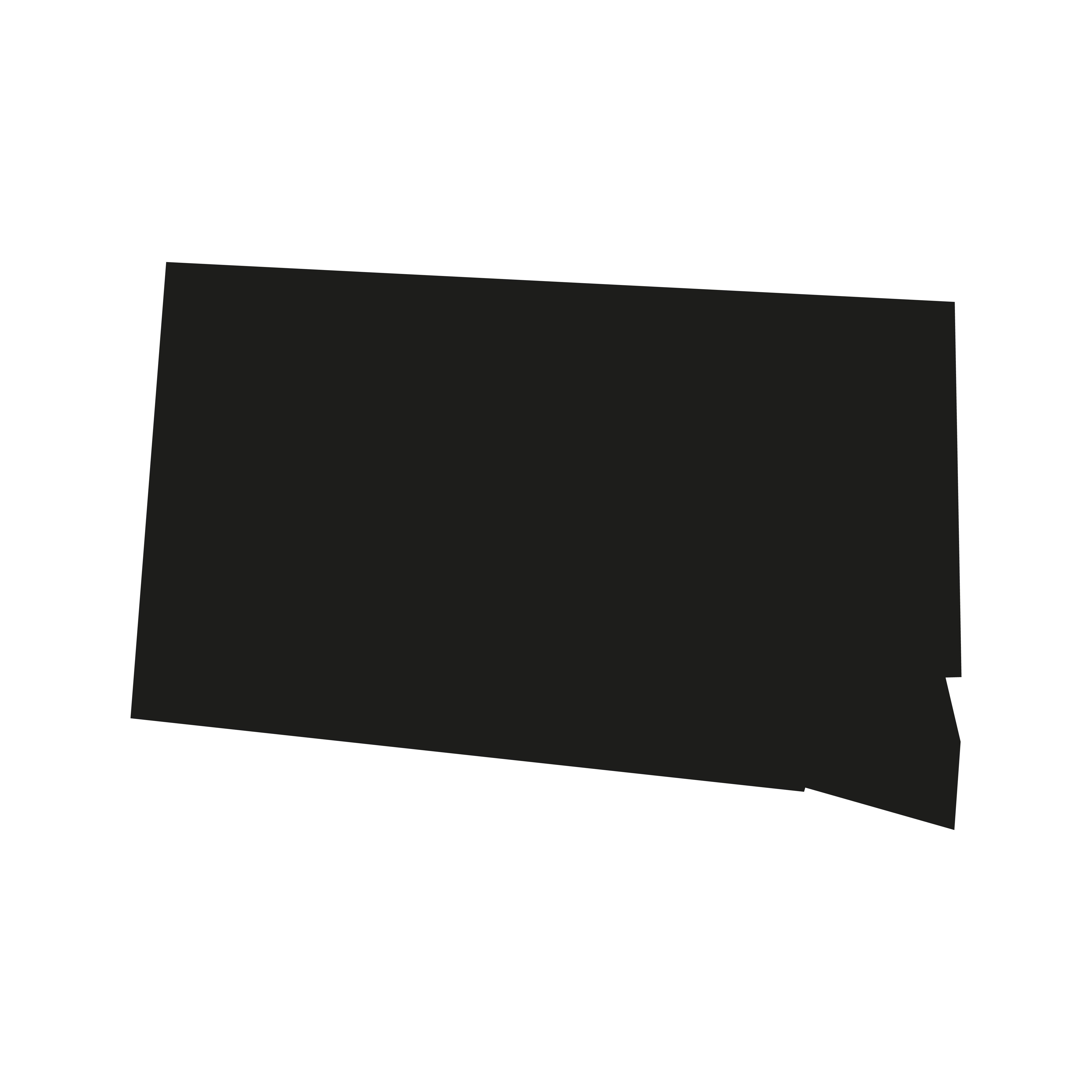 South Dakota, America, Patriot, Vector, Usa, HQ Photo