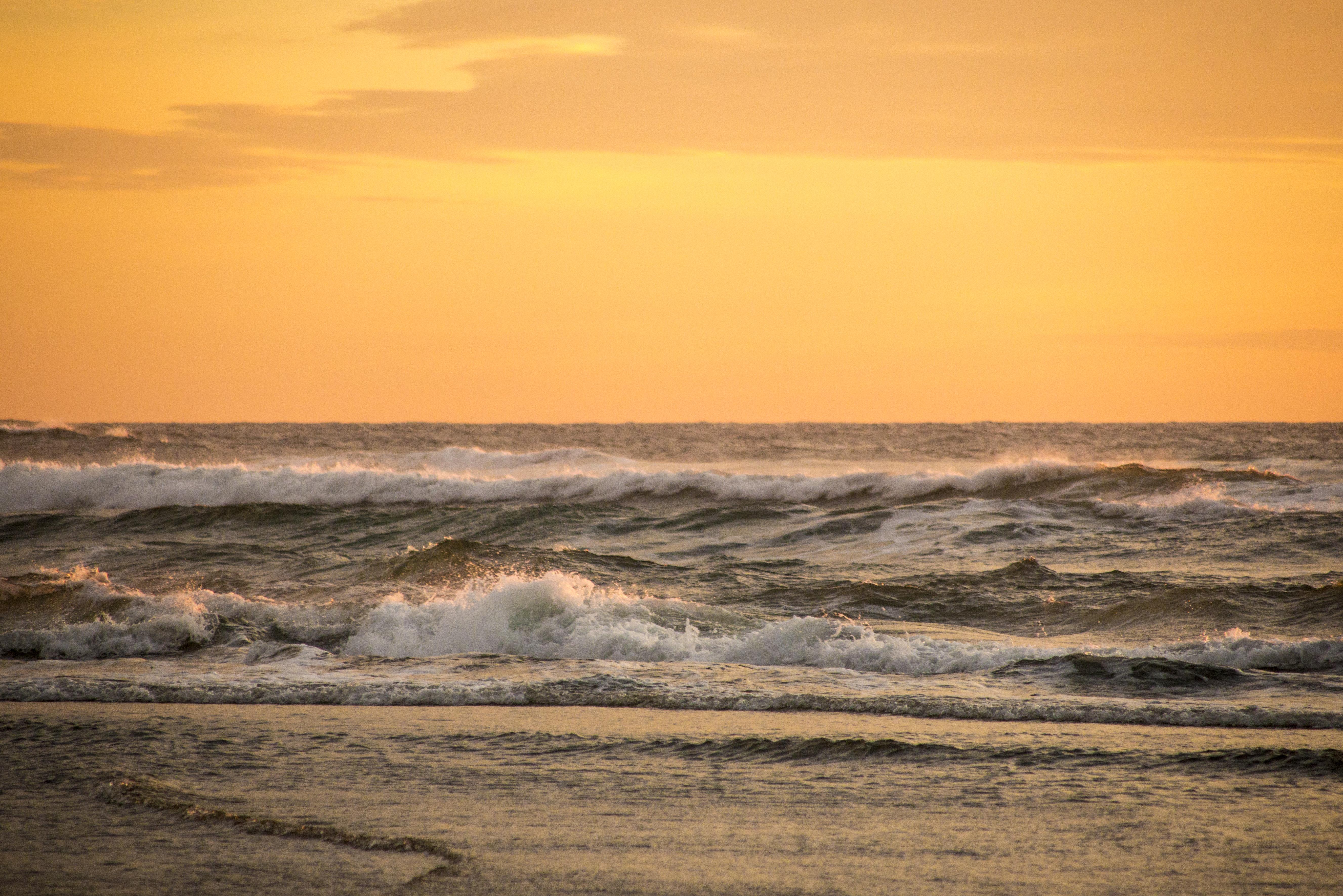 South Jetty Beach, Oregon, Beach, Ocean, Oregon, Sand, HQ Photo