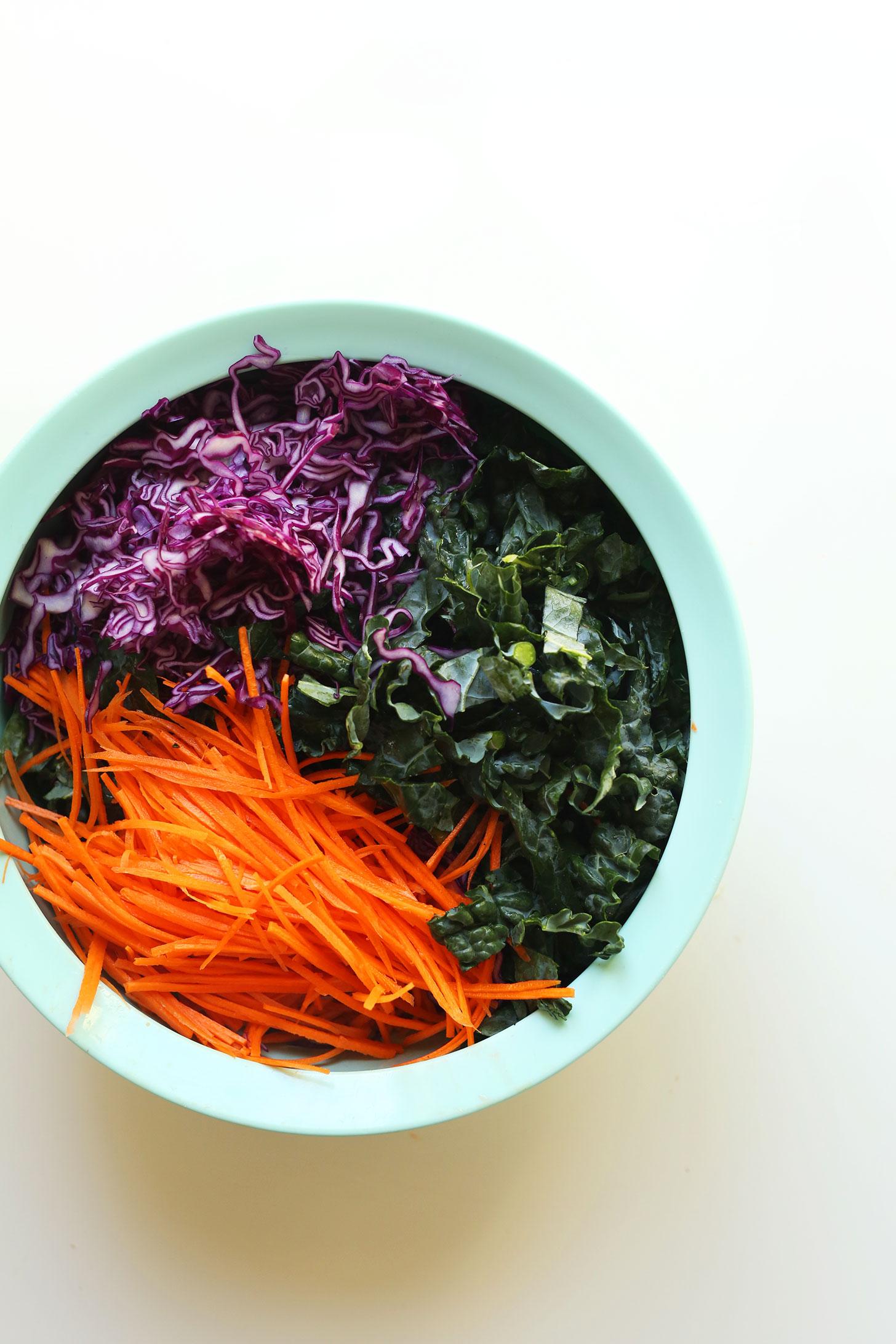 20-minute Asian Kale Salad | Minimalist Baker Salad