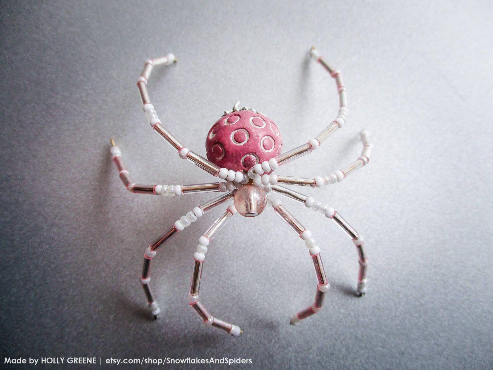 Spider in recipient photo