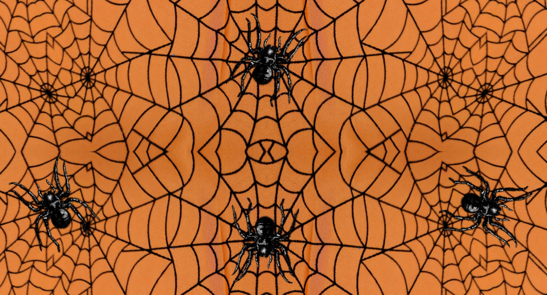 Spider Web Background Free Stock Photo - Public Domain Pictures