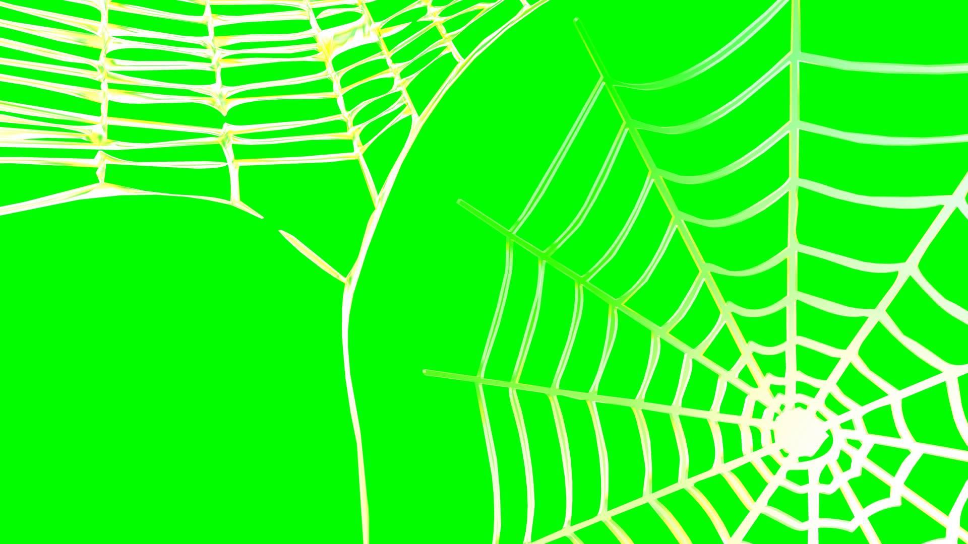 4K Spider Web Rotating Background Animation - YouTube