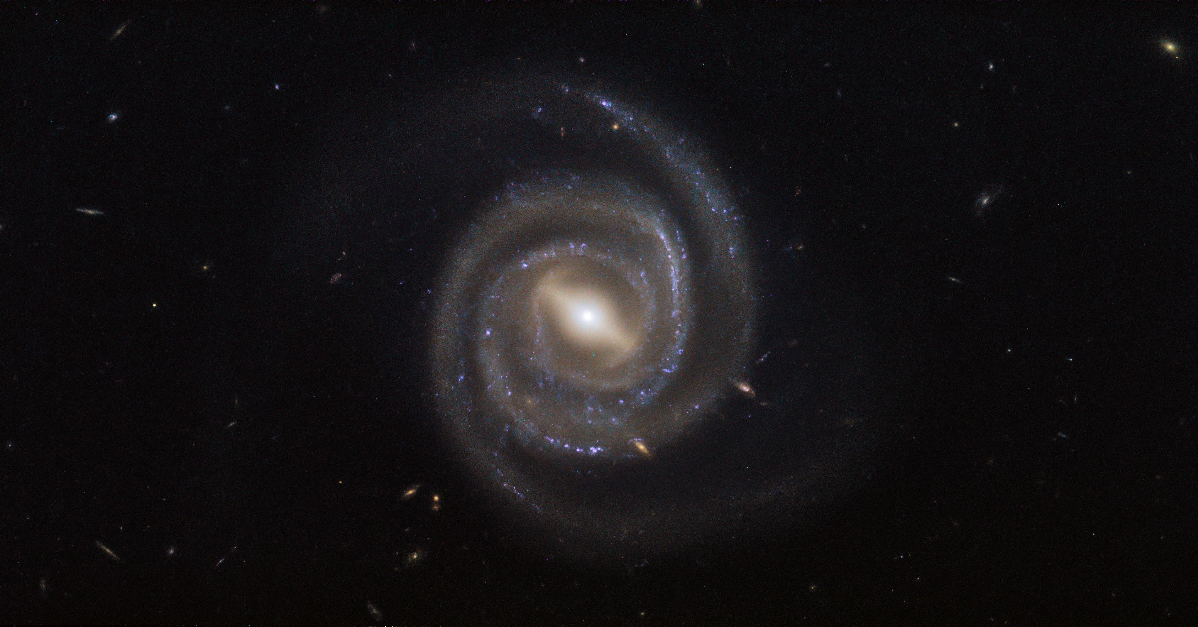 Hubble's Barred and Booming Spiral Galaxy | NASA