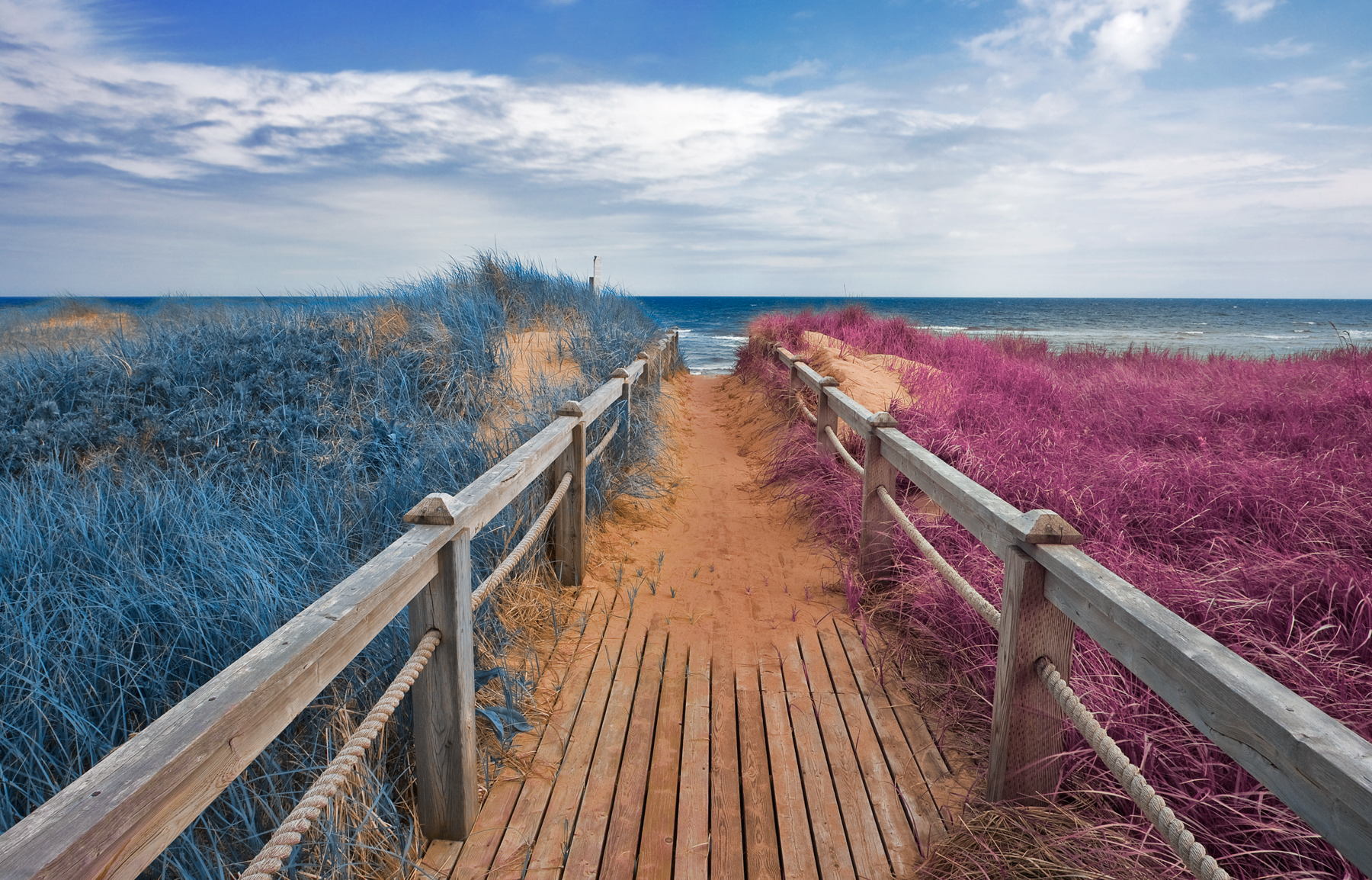 Split tone beach boardwalk - blue & pink photo