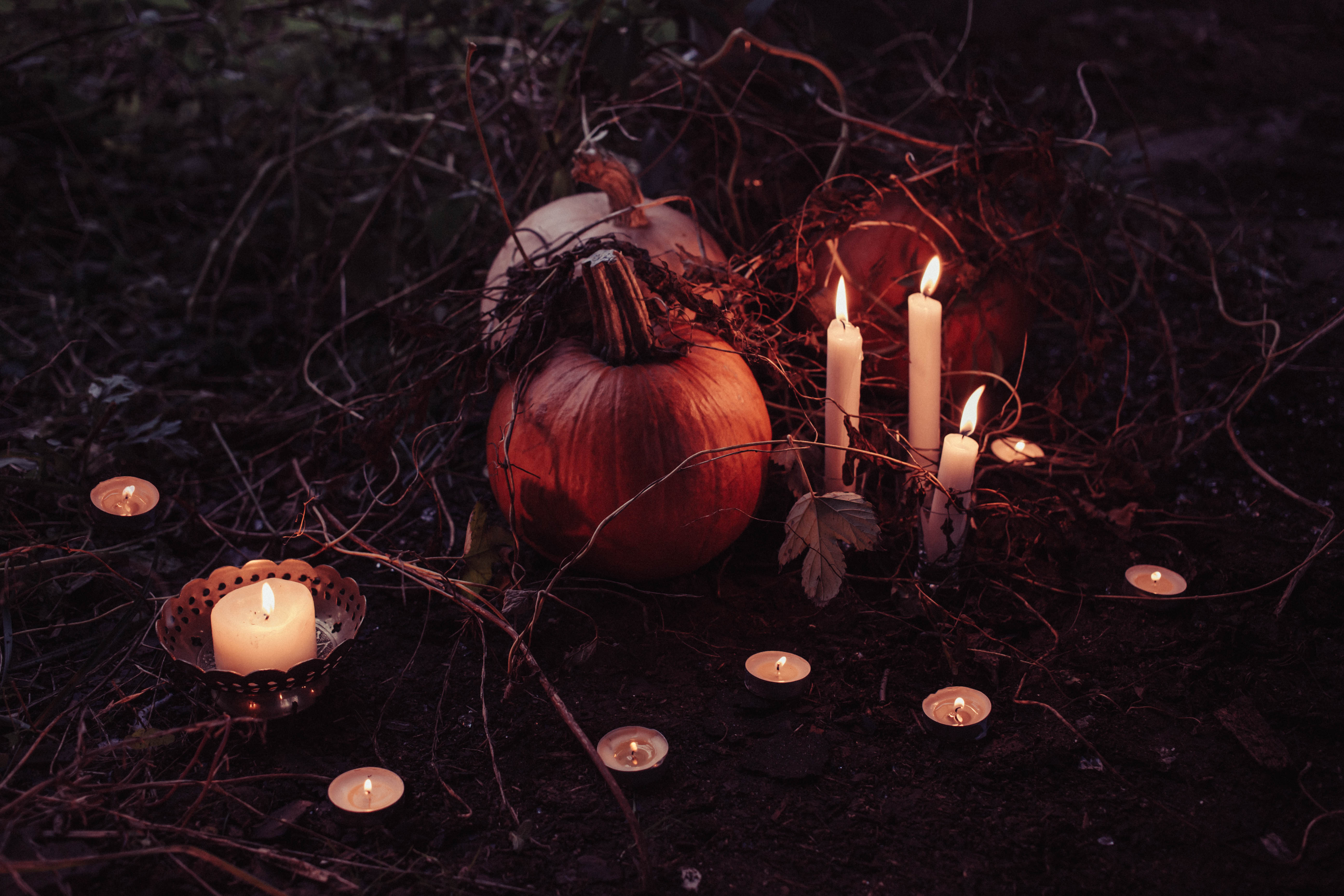 Spooky Halloween decoration, Autumn, Magic, Treat, Traditional, HQ Photo