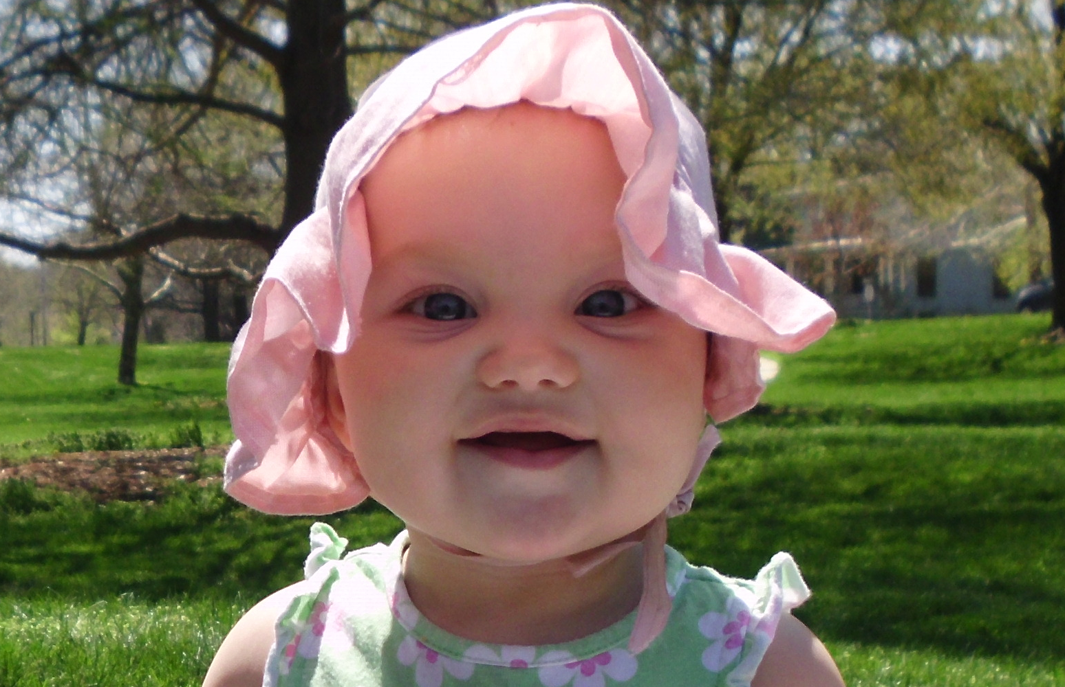 Spring Baby, Baby, Bonnet, Flowers, Girl, HQ Photo