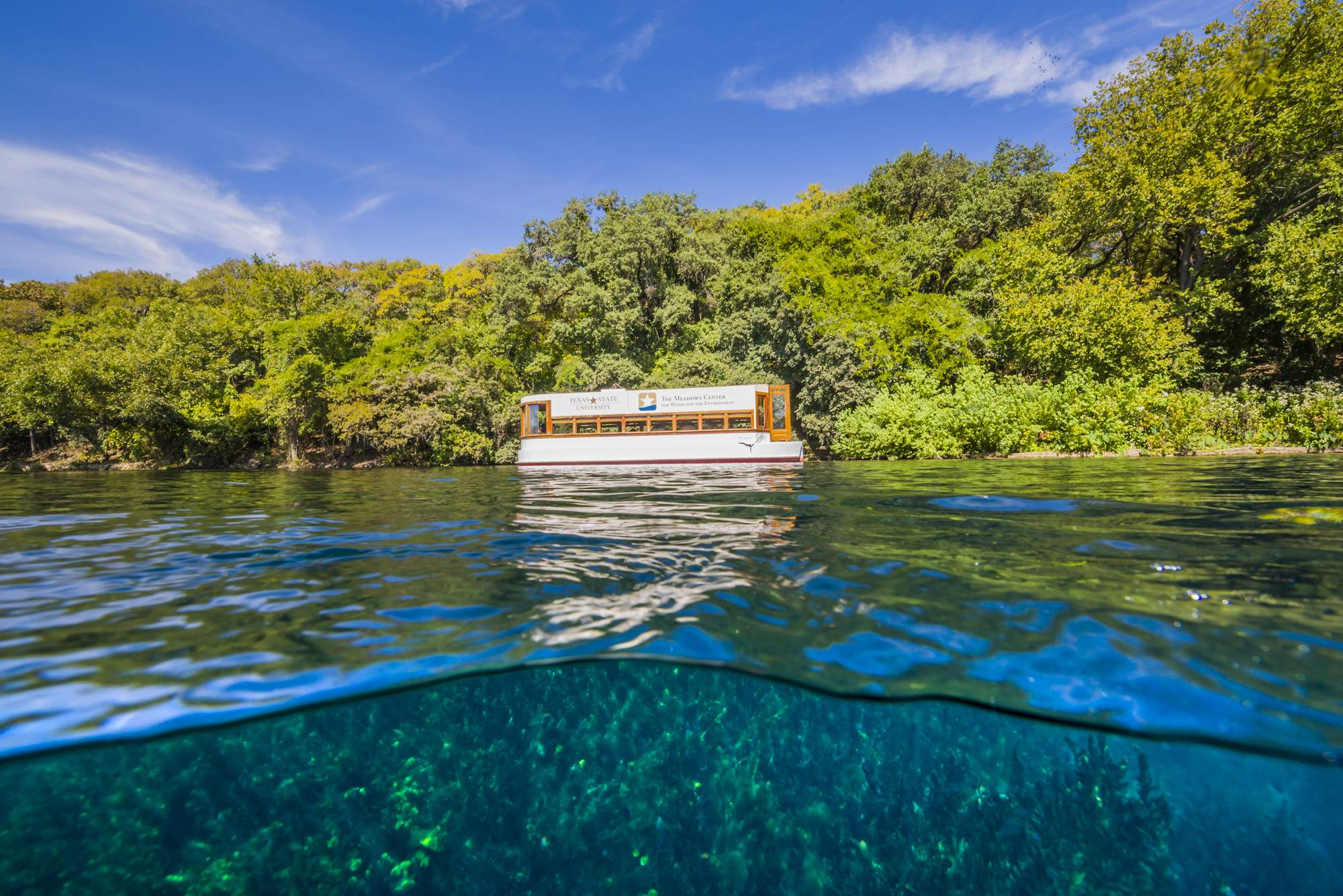 Explore Spring Lake : The Meadows Center for Water and the ...