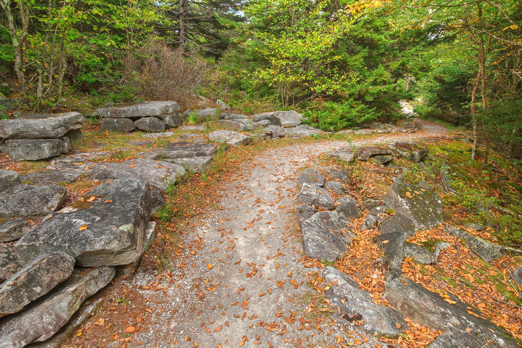 Spruce Knob Autumn Rock Trail - HDR, Adventure, Quiet, Scenery, Scene, HQ Photo