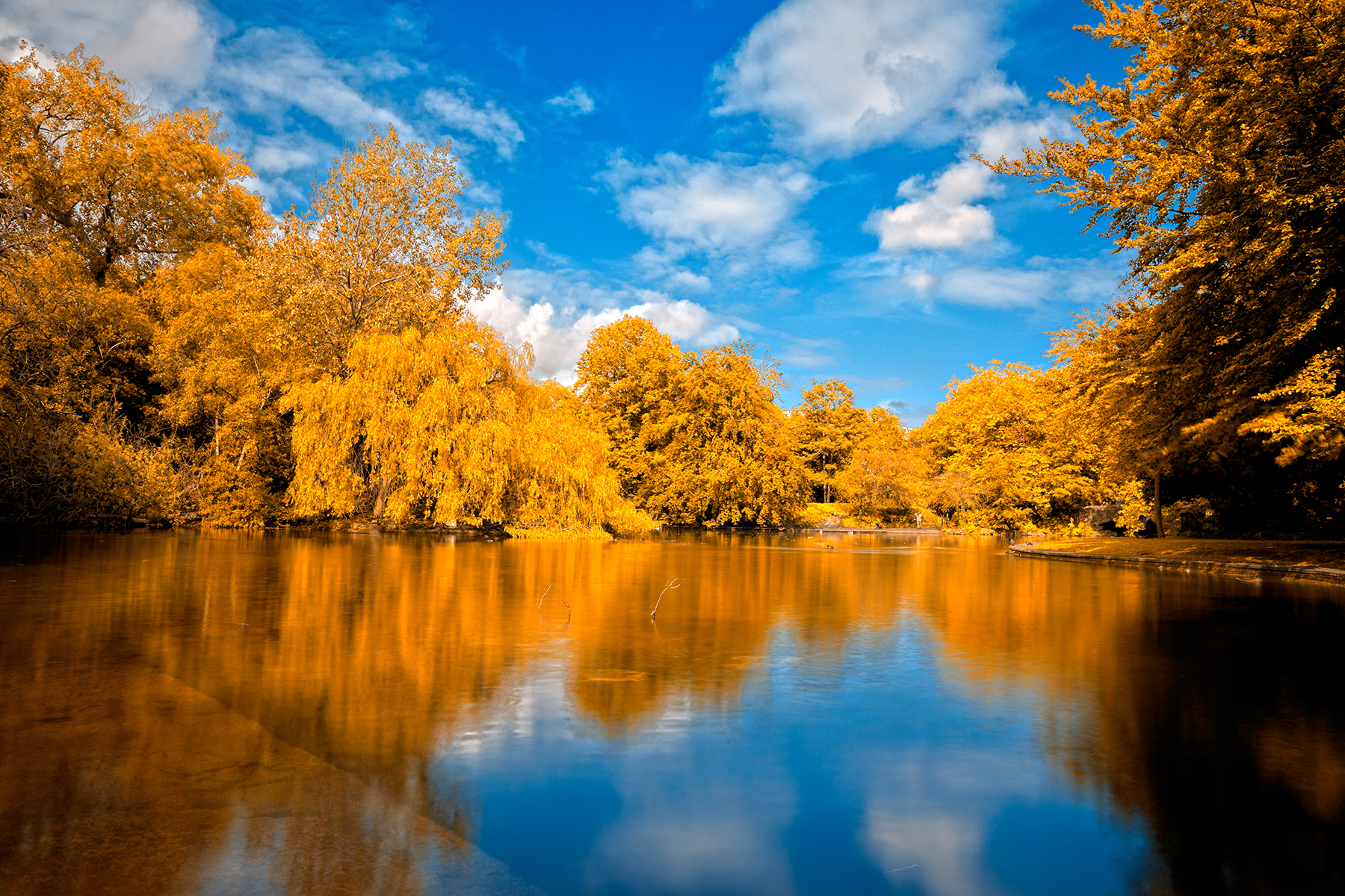 St Stephens Gold - HDR, Angle, Reflect, Shade, Scenic, HQ Photo