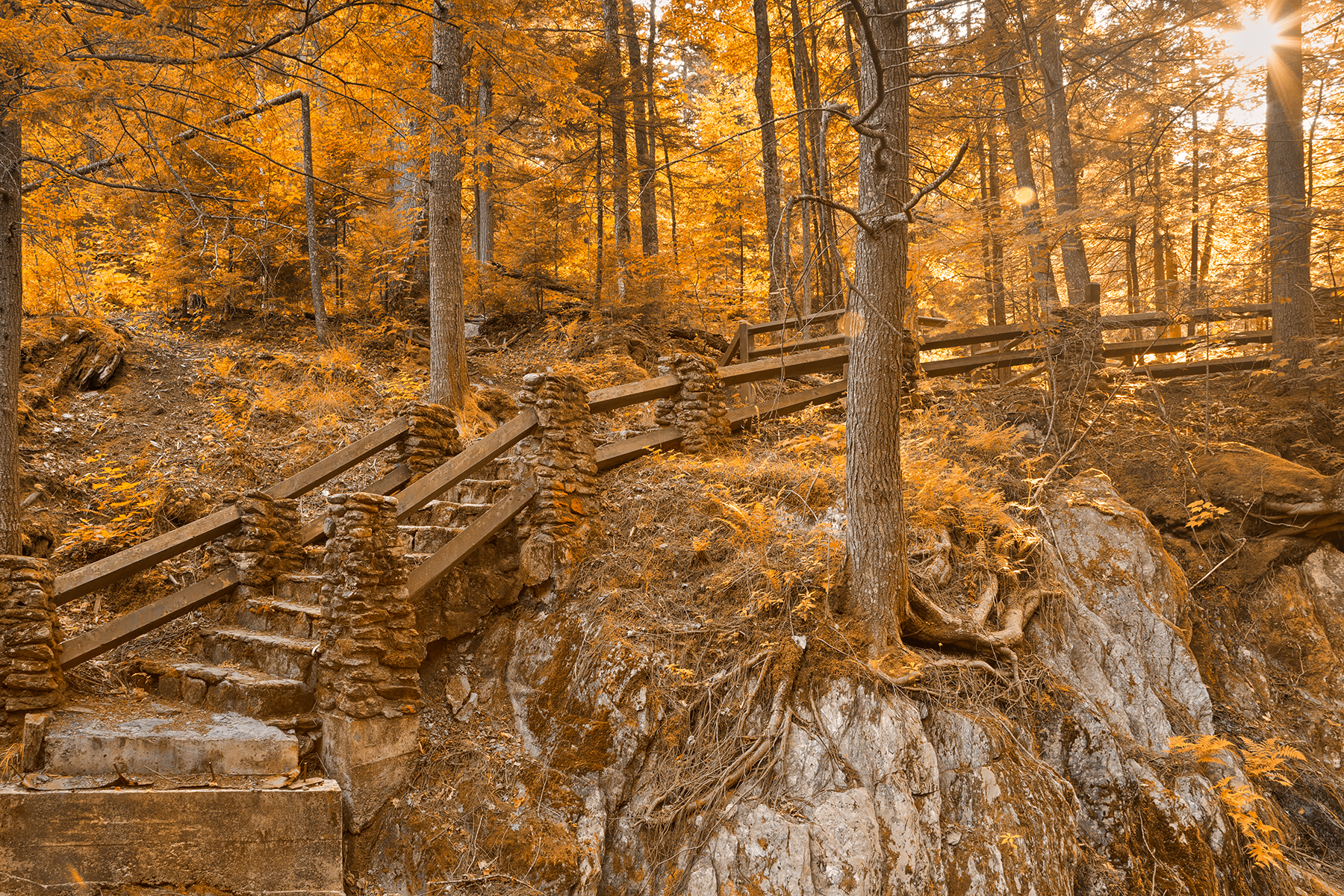 Stairway to neglected enlightenment - sepia gold hdr photo