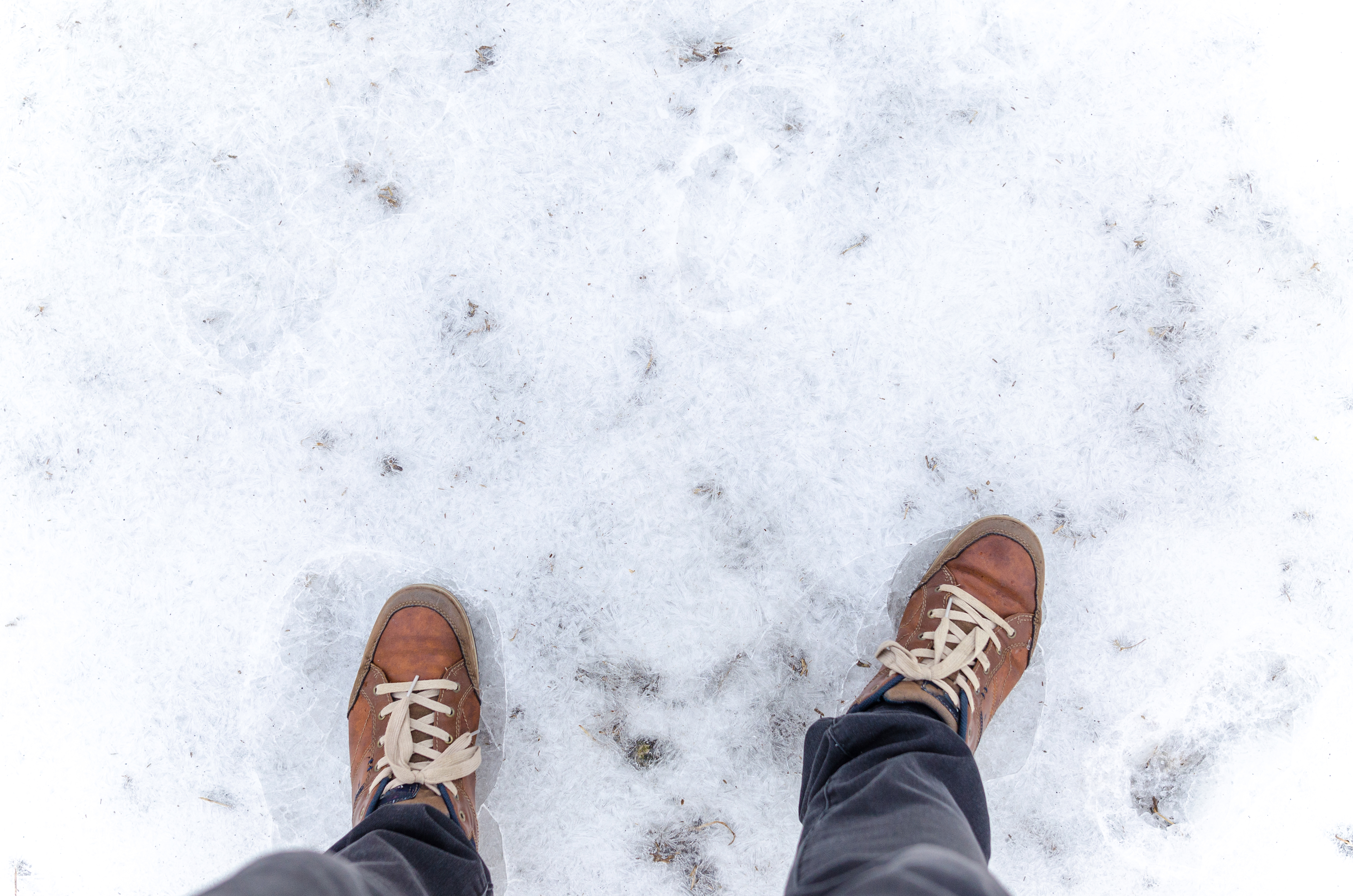 Standing on frosted ground photo