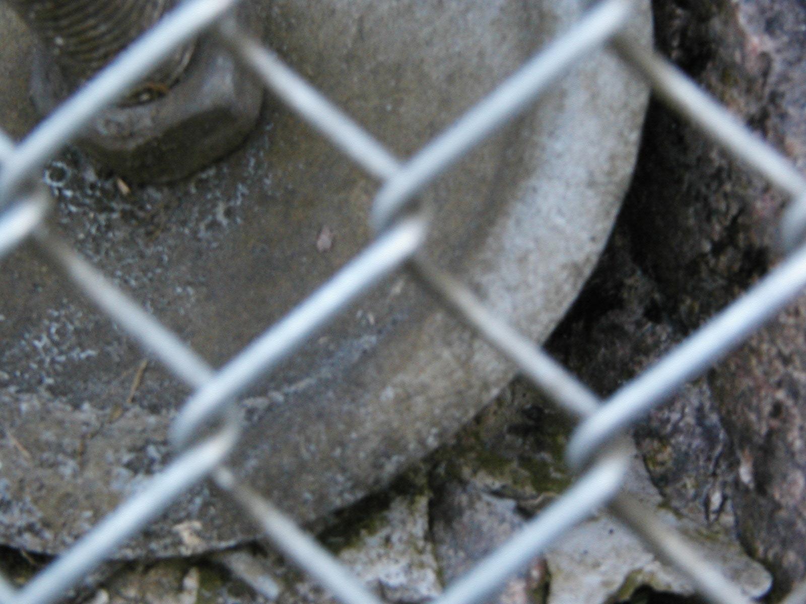 Steel fence photo