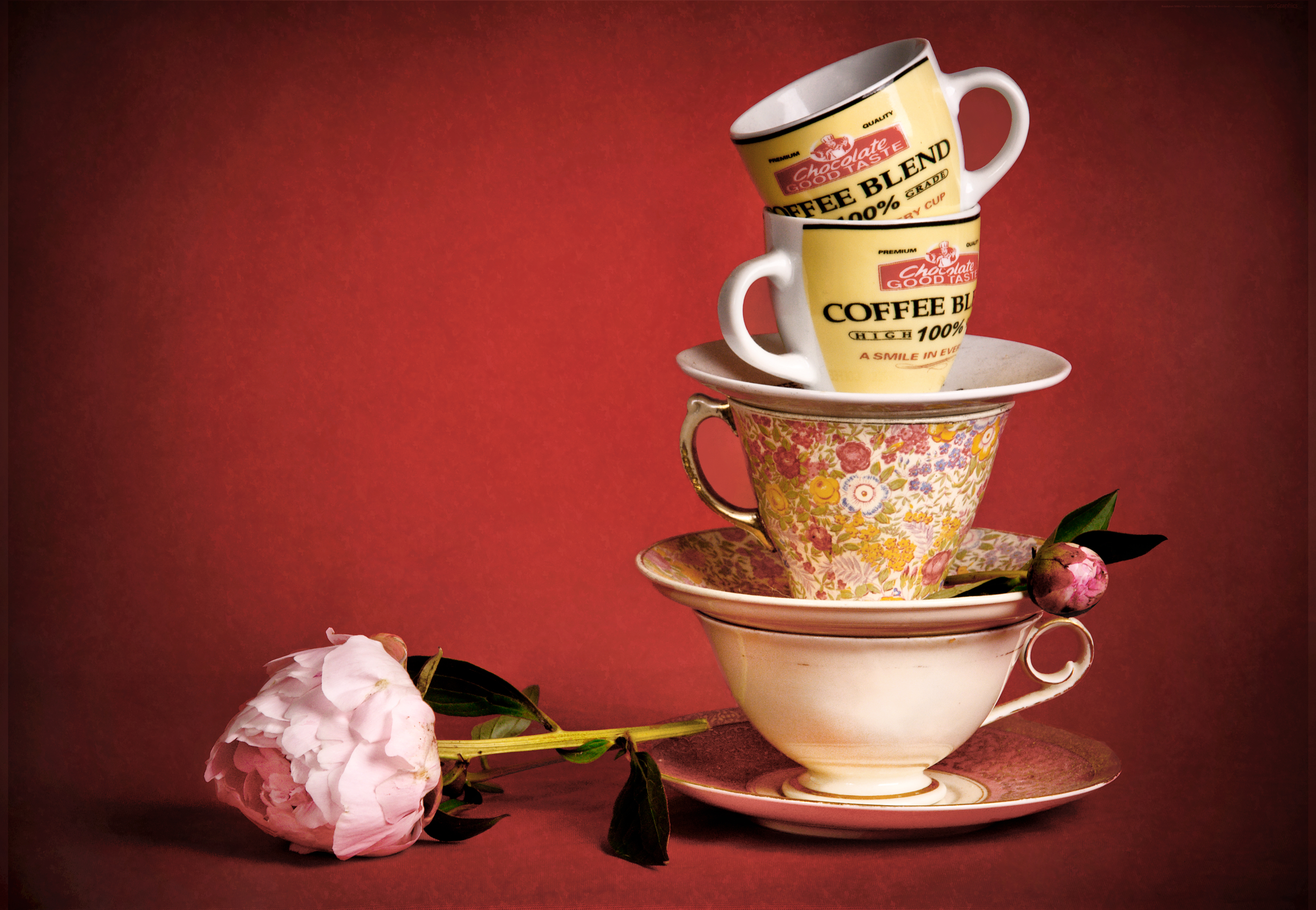 Still life with tea cups and flowers, Tea, Photography, Studio, Stilllife, HQ Photo