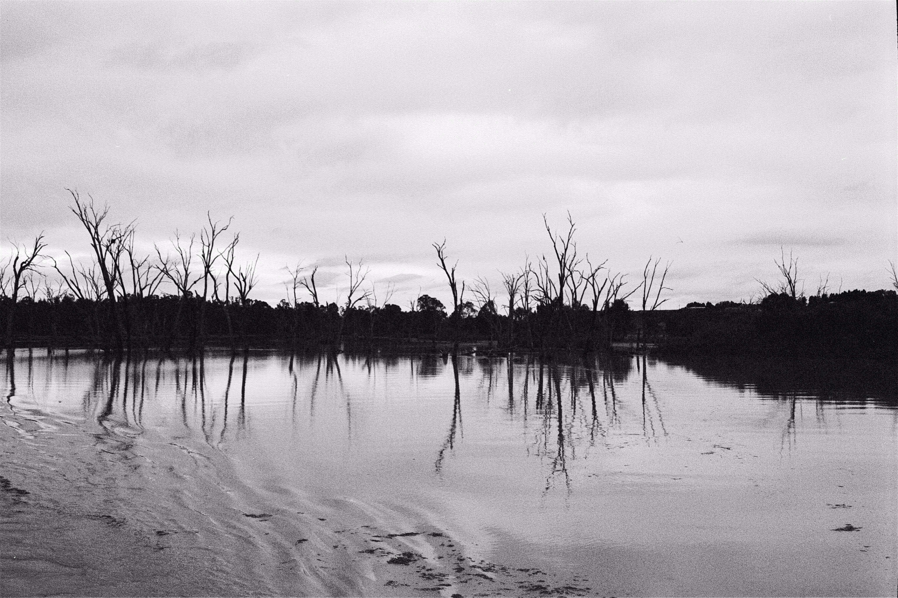 Still water photo