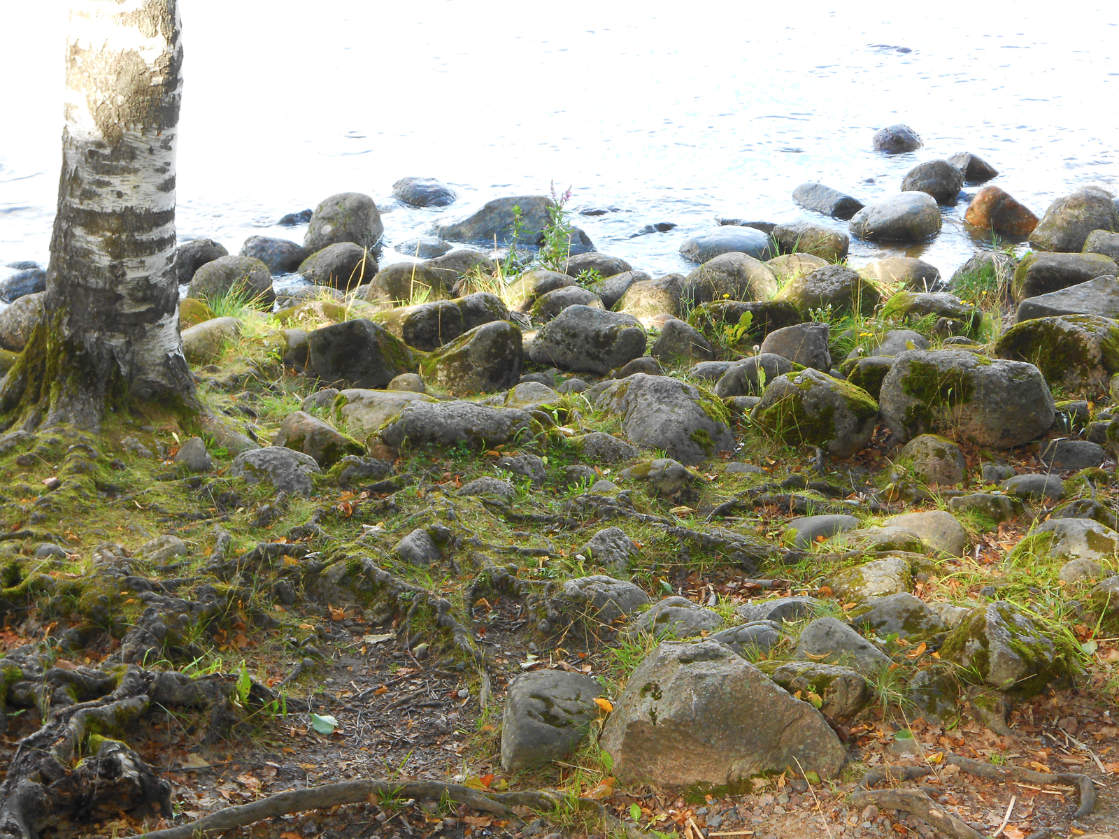 stones, Coast, Coastline, Nature, Rock, HQ Photo