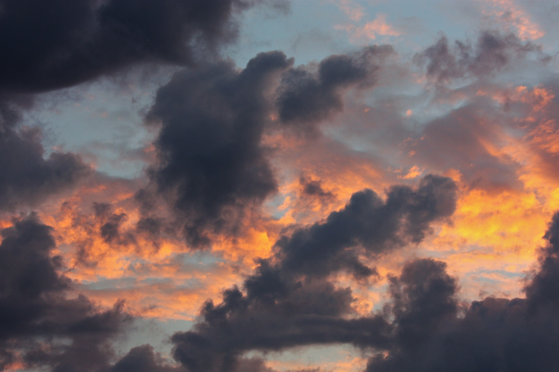 Storm Clouds At Sunrise Free Stock Photo - Public Domain Pictures