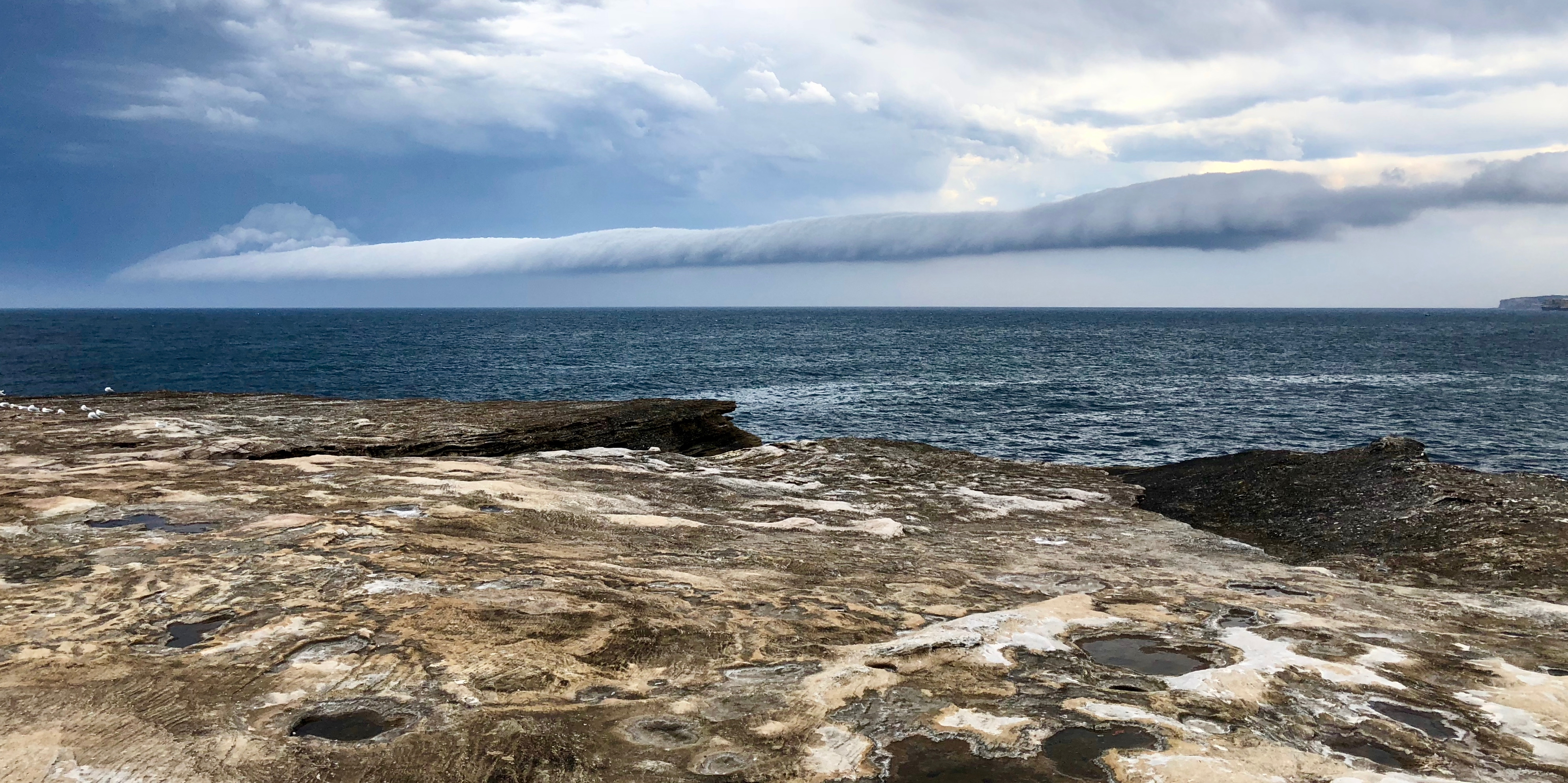 Storm rolling over Coogee, Rock, Sea, Sky, Water, HQ Photo