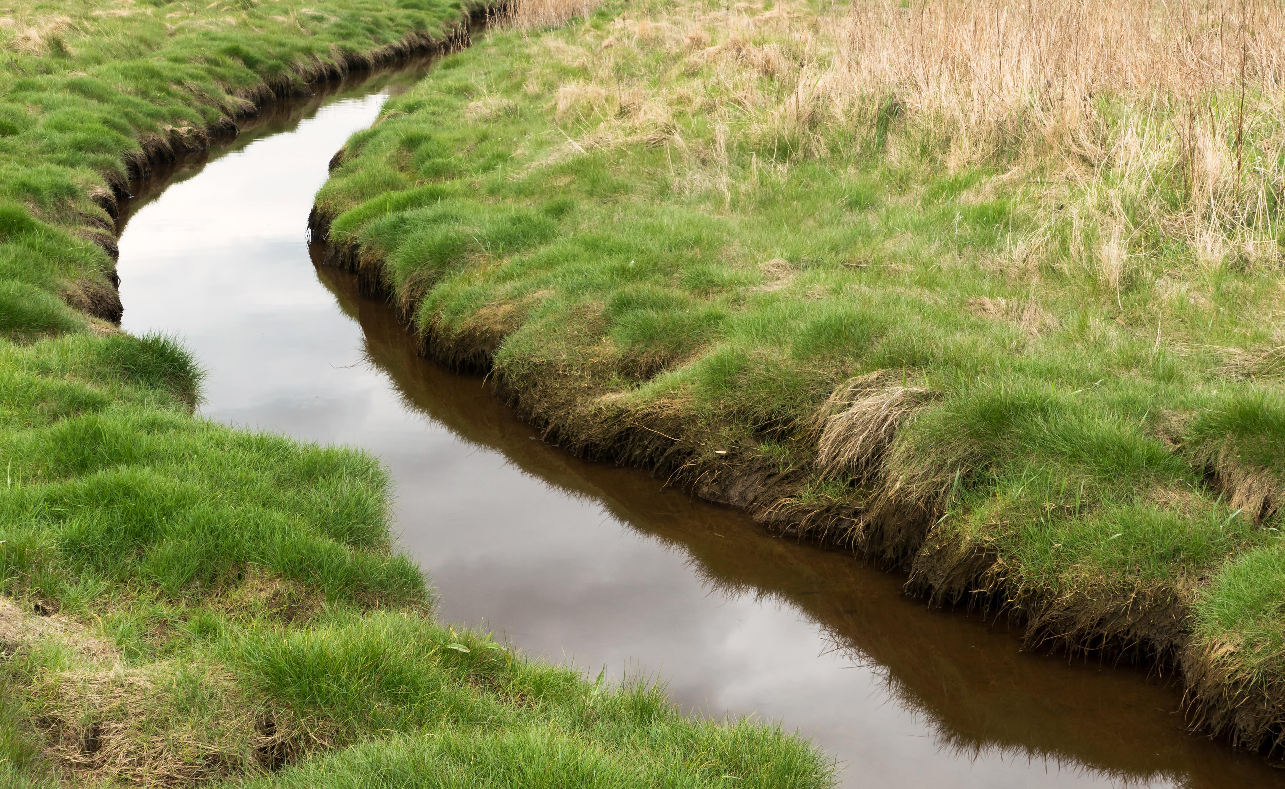 Stream at Gullmarsvik 3, Grass, Lysekil, Overcast, Reflection, HQ Photo