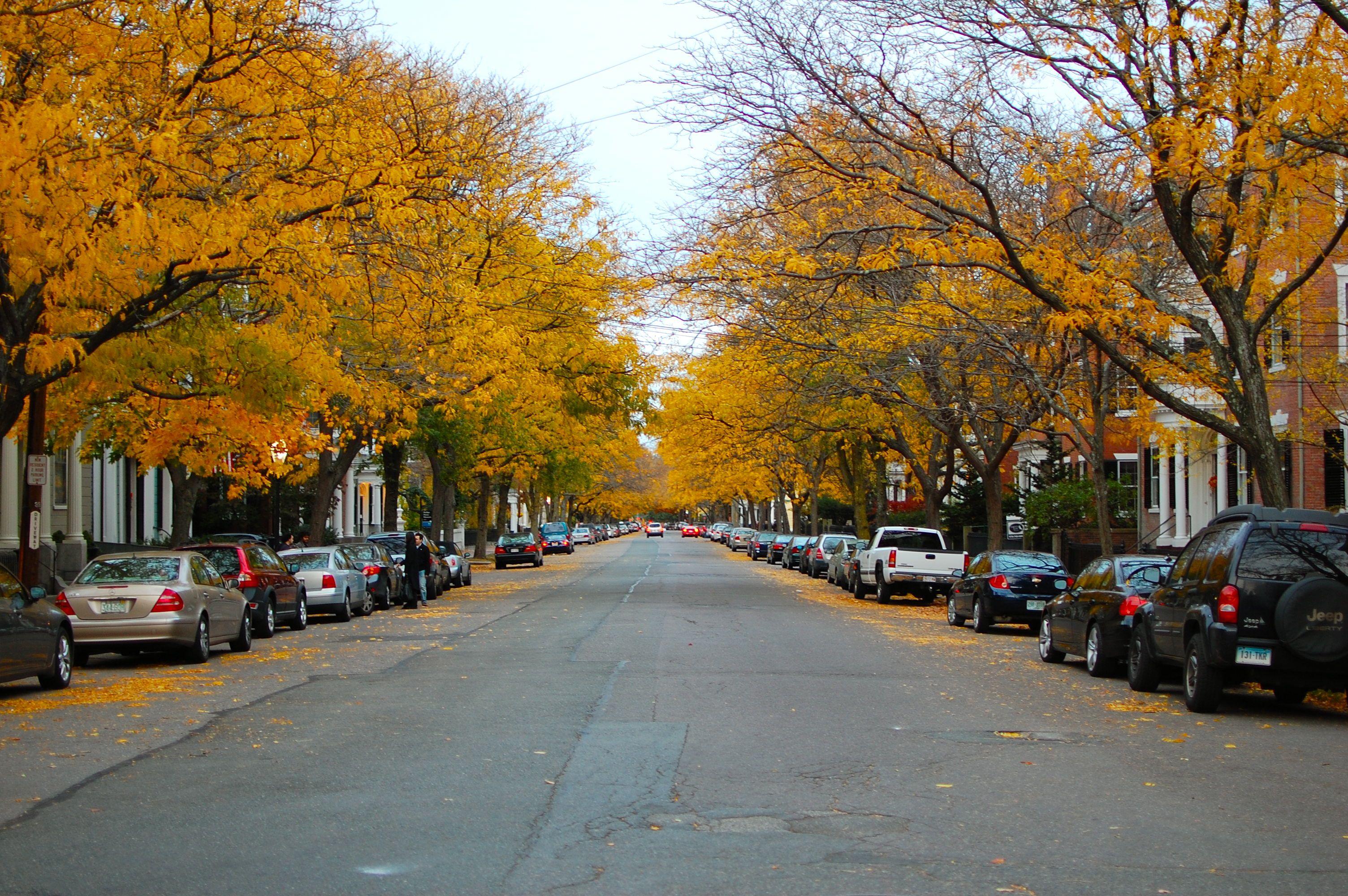 File:Chestnut Street Salem.jpg - Wikimedia Commons