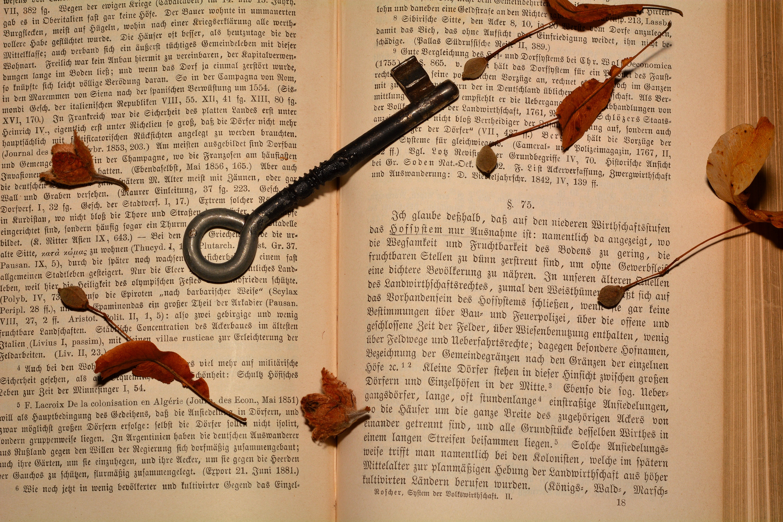 Study, Book, Knowledge, Novel, Paper, HQ Photo
