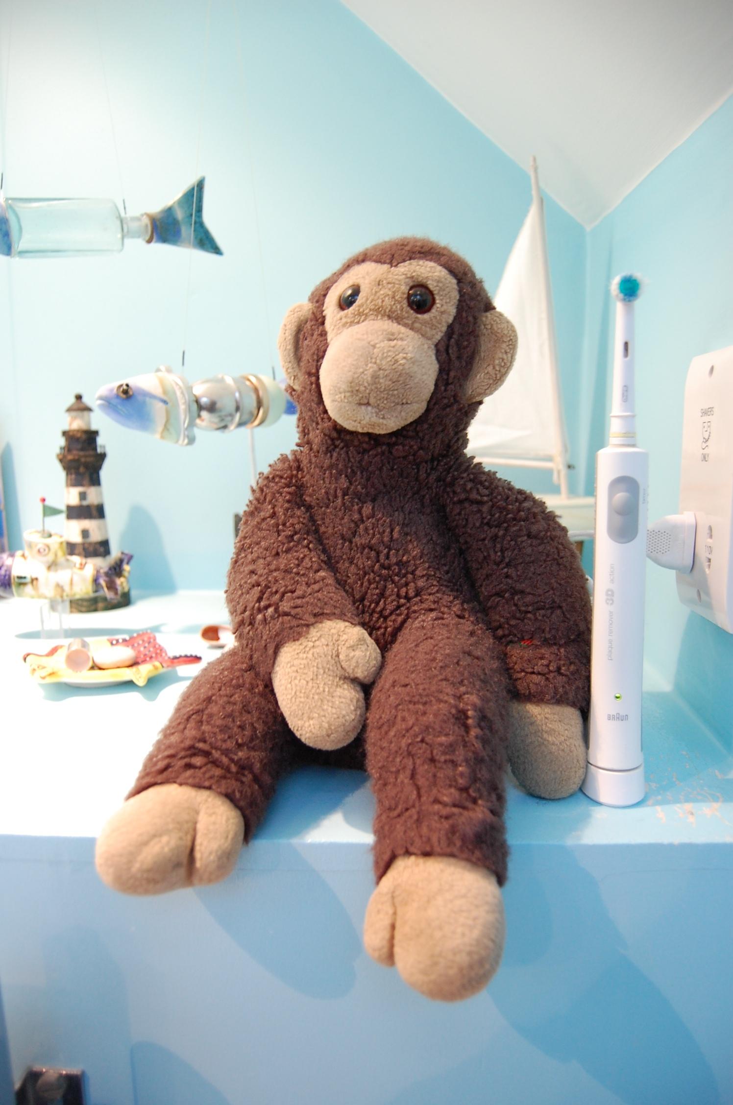 Stuffed monkey, Stuffed, Toothbrush, Toy, Monkey, HQ Photo