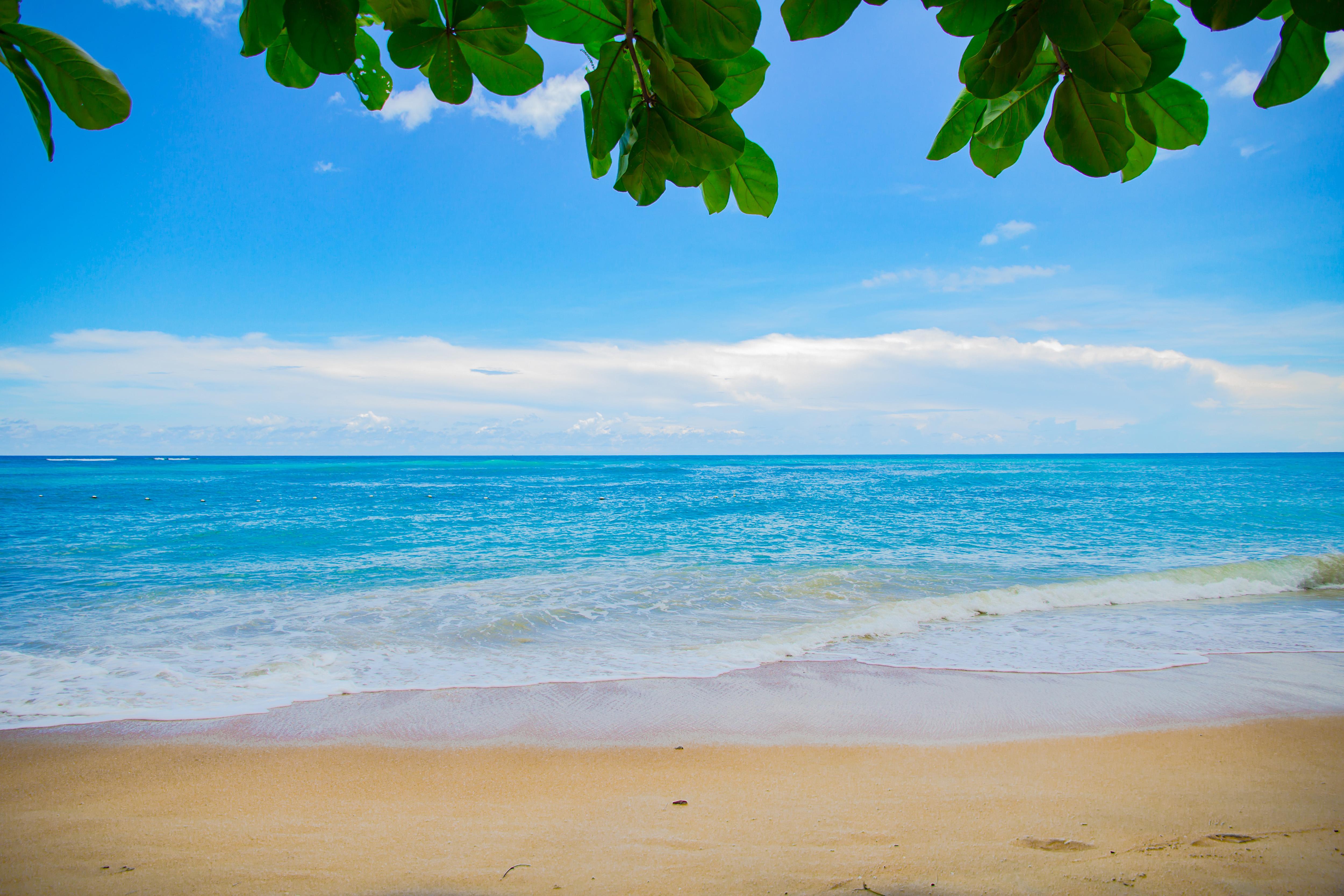 Summer Beach Free Photo - ISO Republic
