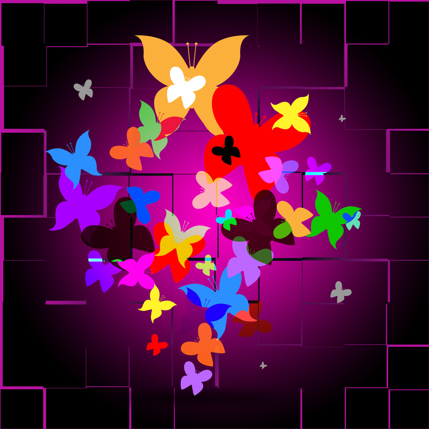 Summer butterflies indicates animals butterfly and creature photo