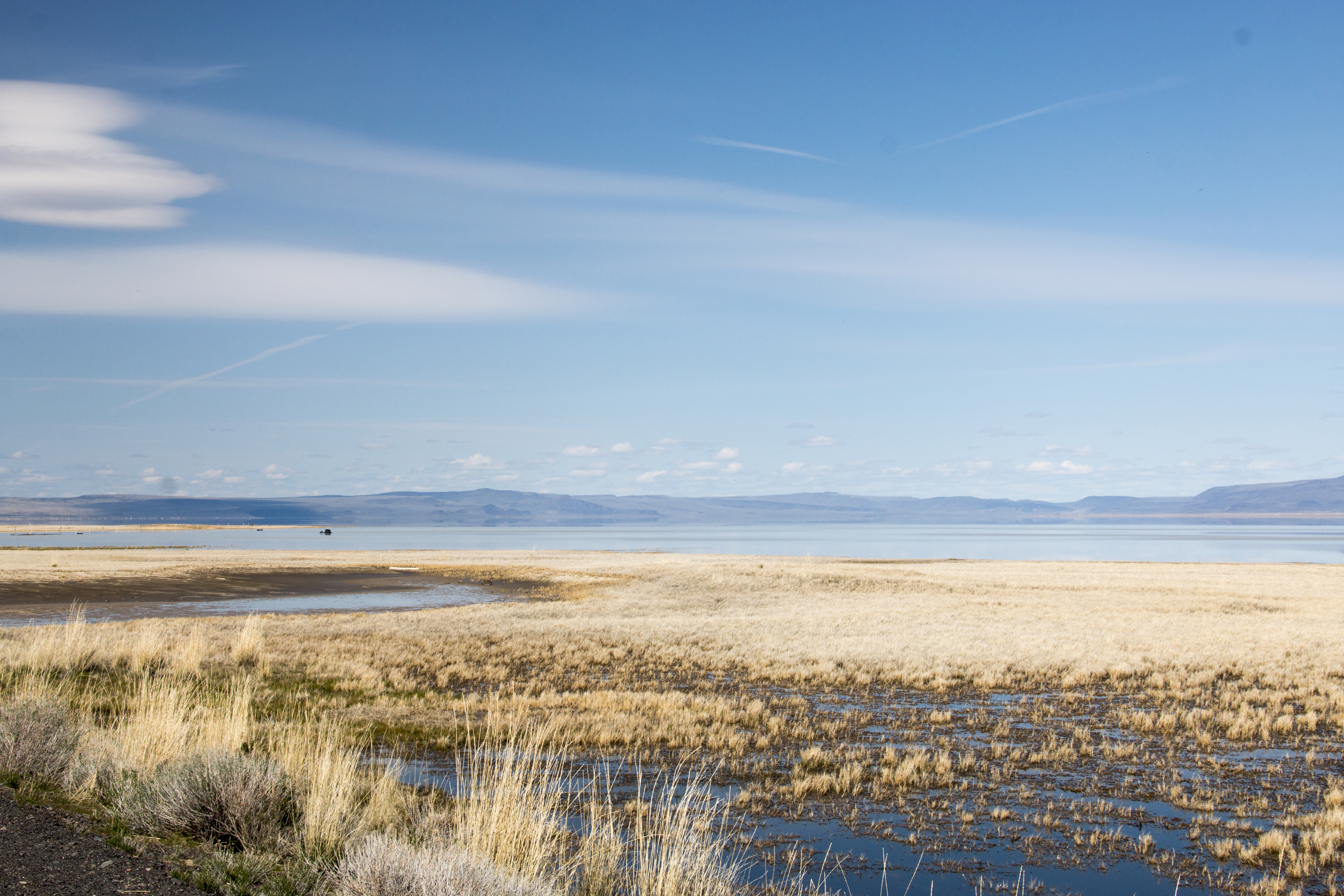 Summer lake, oregon 2 photo