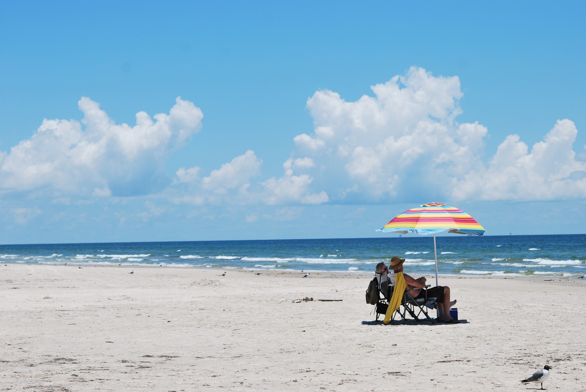 Sunbath on the Seashore, Activity, Blue, Human, Nature, HQ Photo