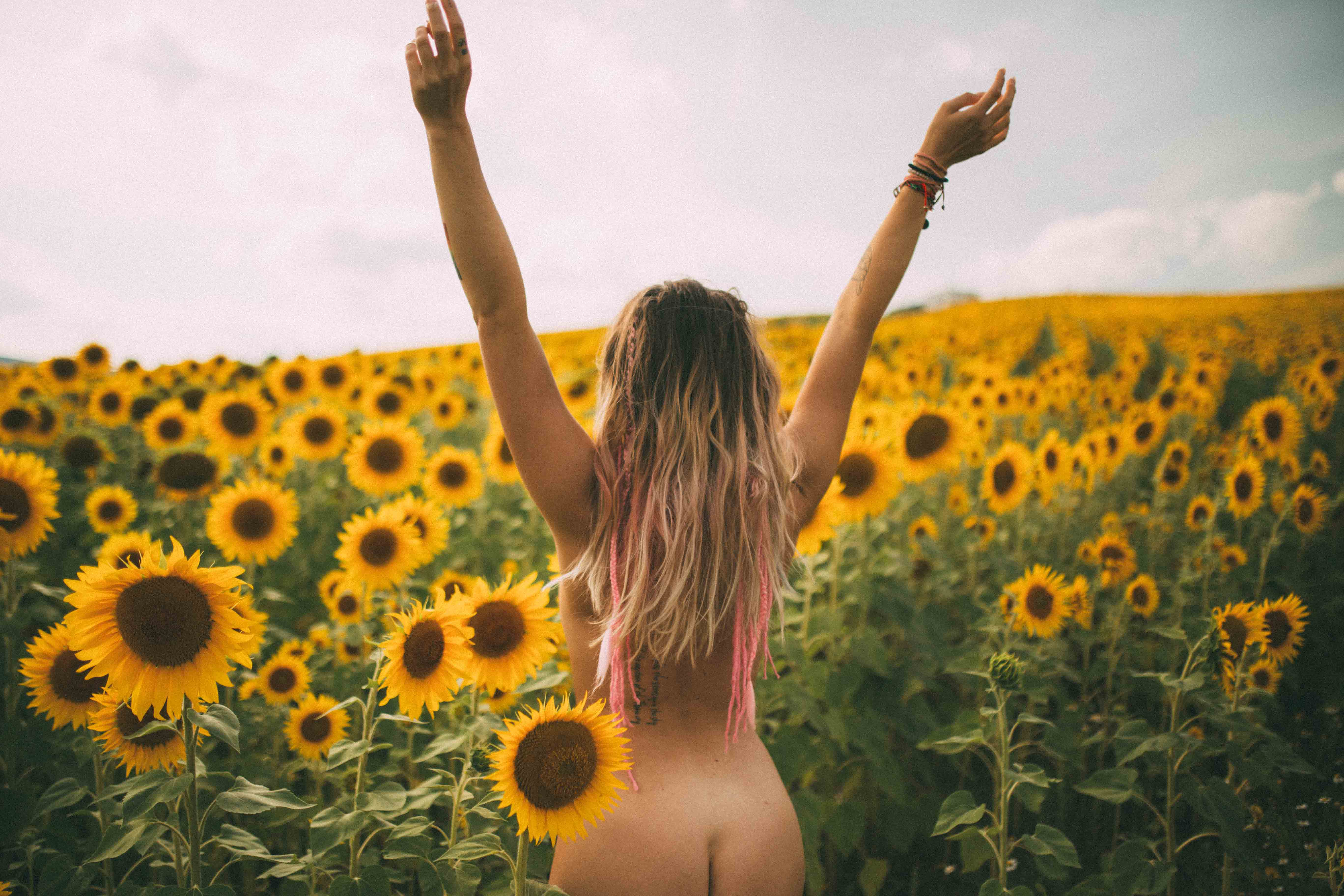 SUNFLOWER FIELD LOVE – natinstablog