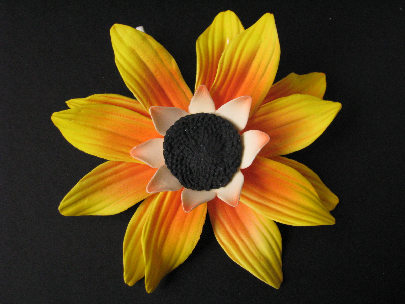 Sunflower with black center