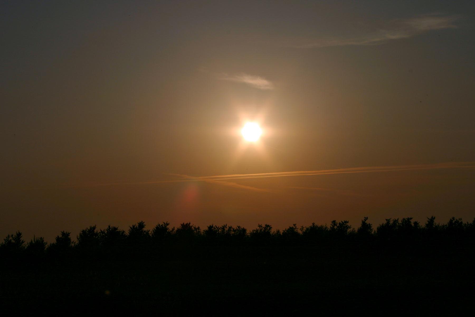Sunny day photo