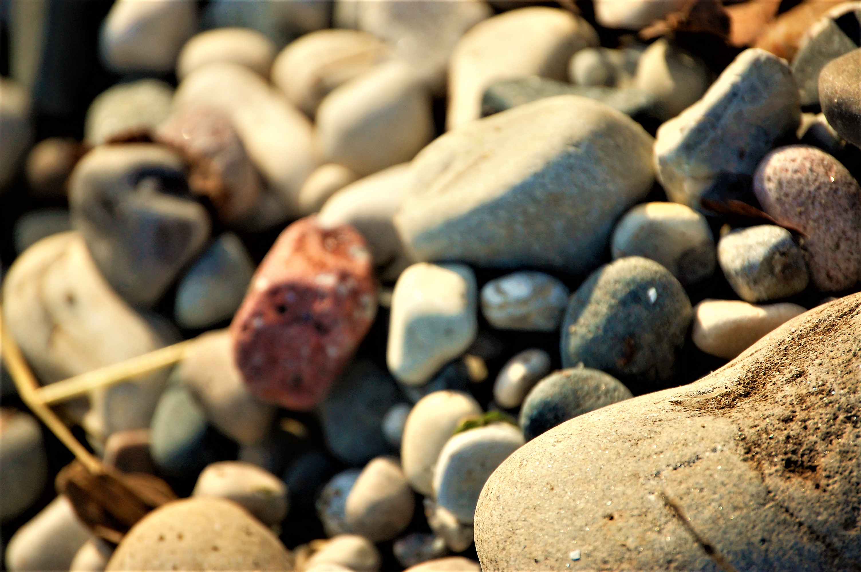 Sunny Rocks, Pebbles, Red, Rock, Rocks, HQ Photo