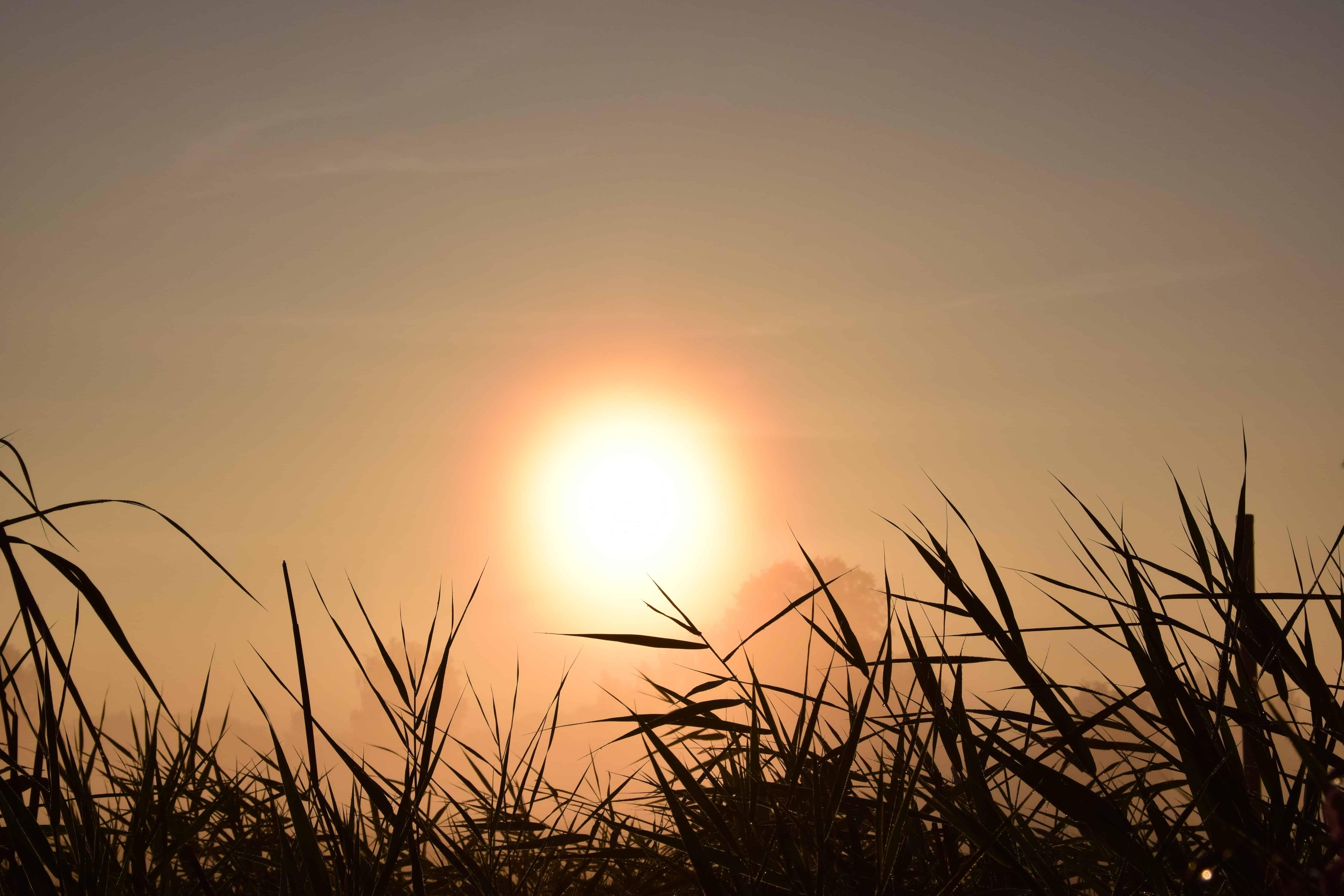 Sunrise free images, public domain images