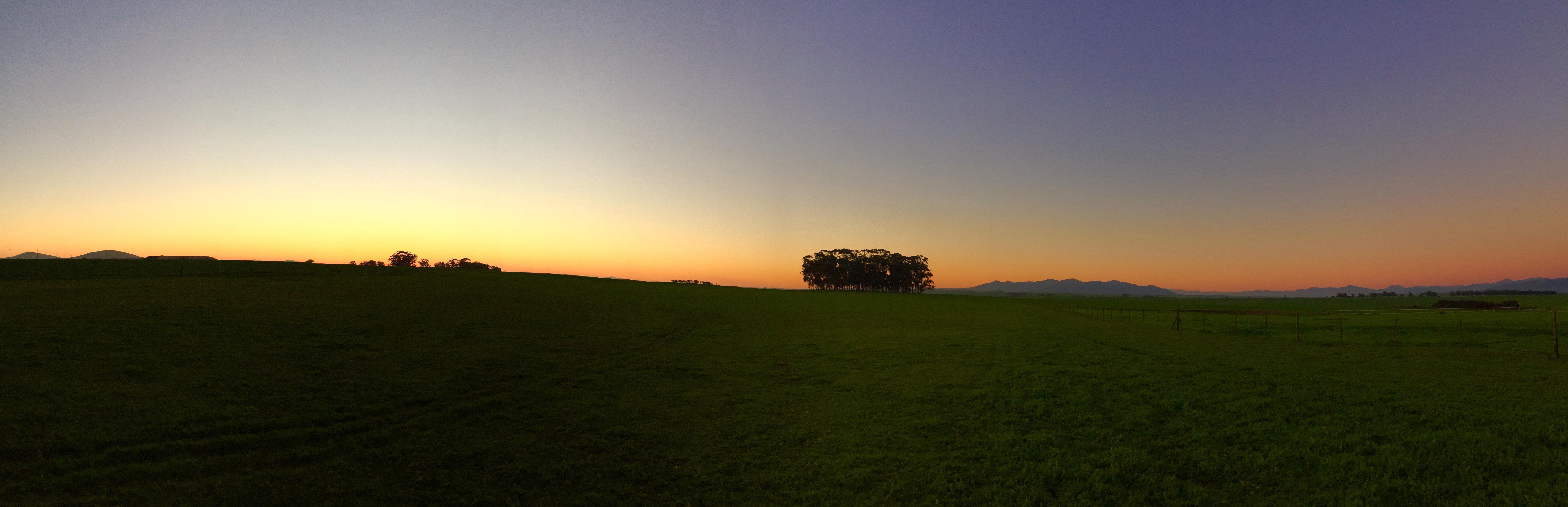 grass field sunrise. Exellent Sunrise More  Sunrise On Green Grass Field With E