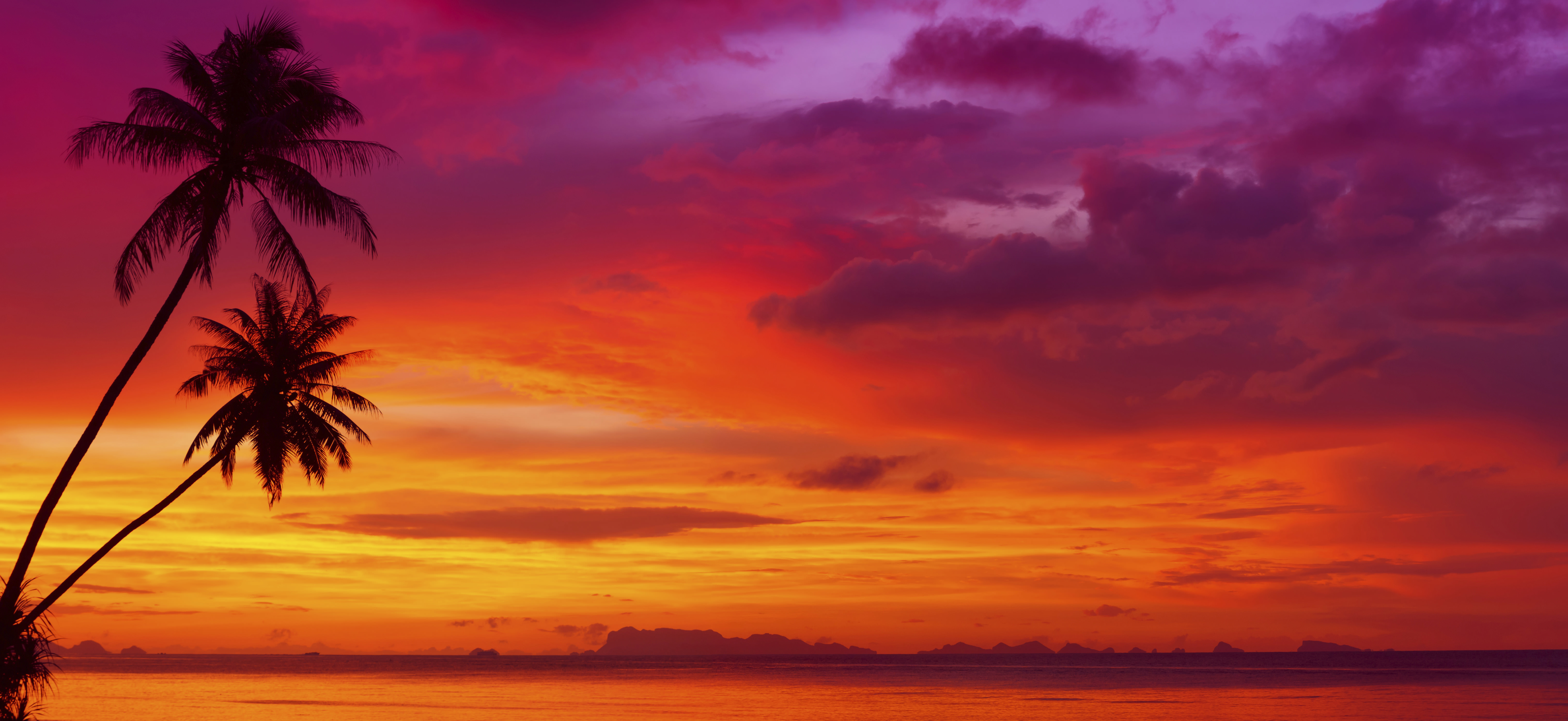 Sunset With Tropical Palm Trees – Designer Splashback - Cameo Glass