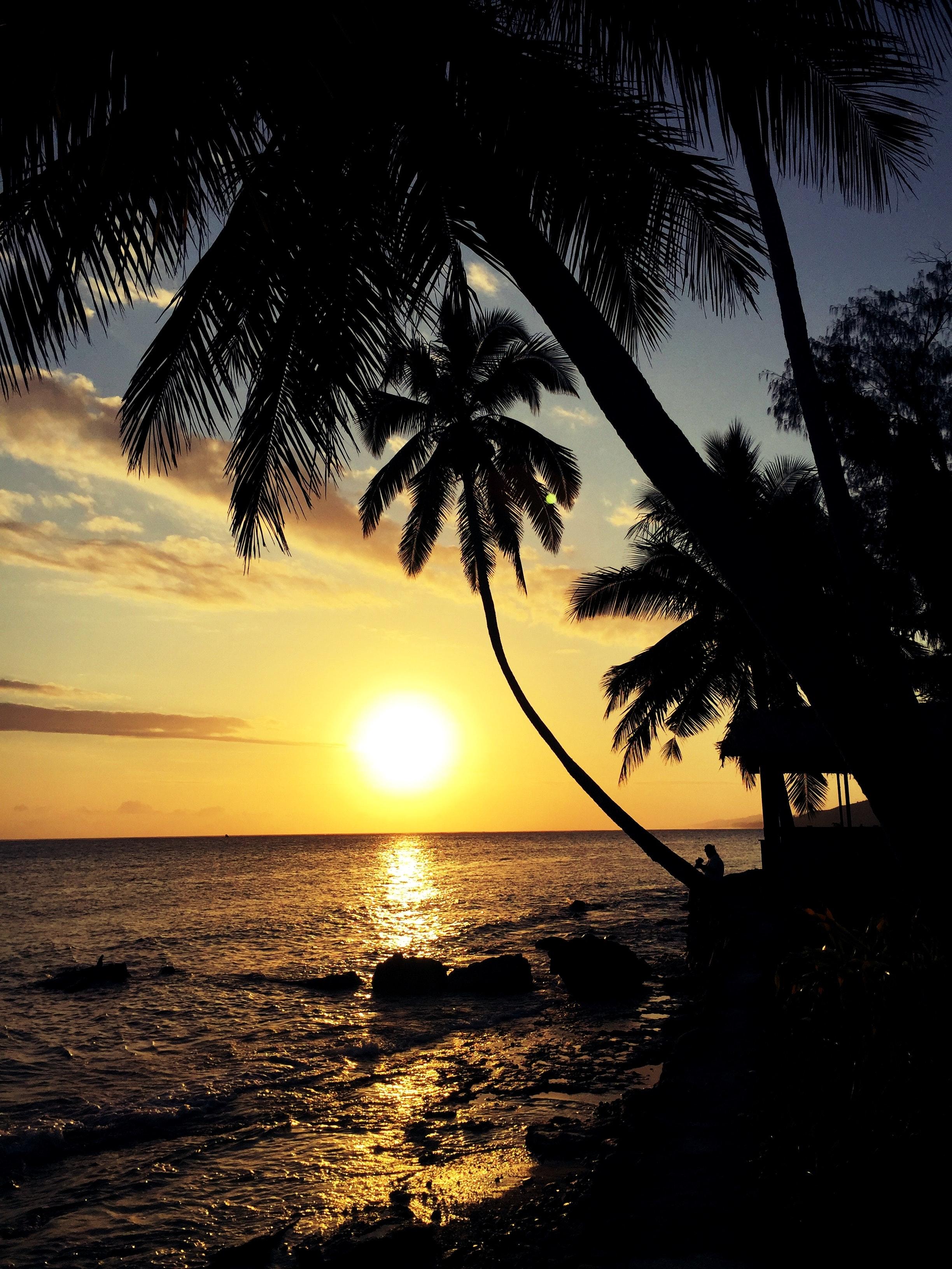 Sunset at beach photo
