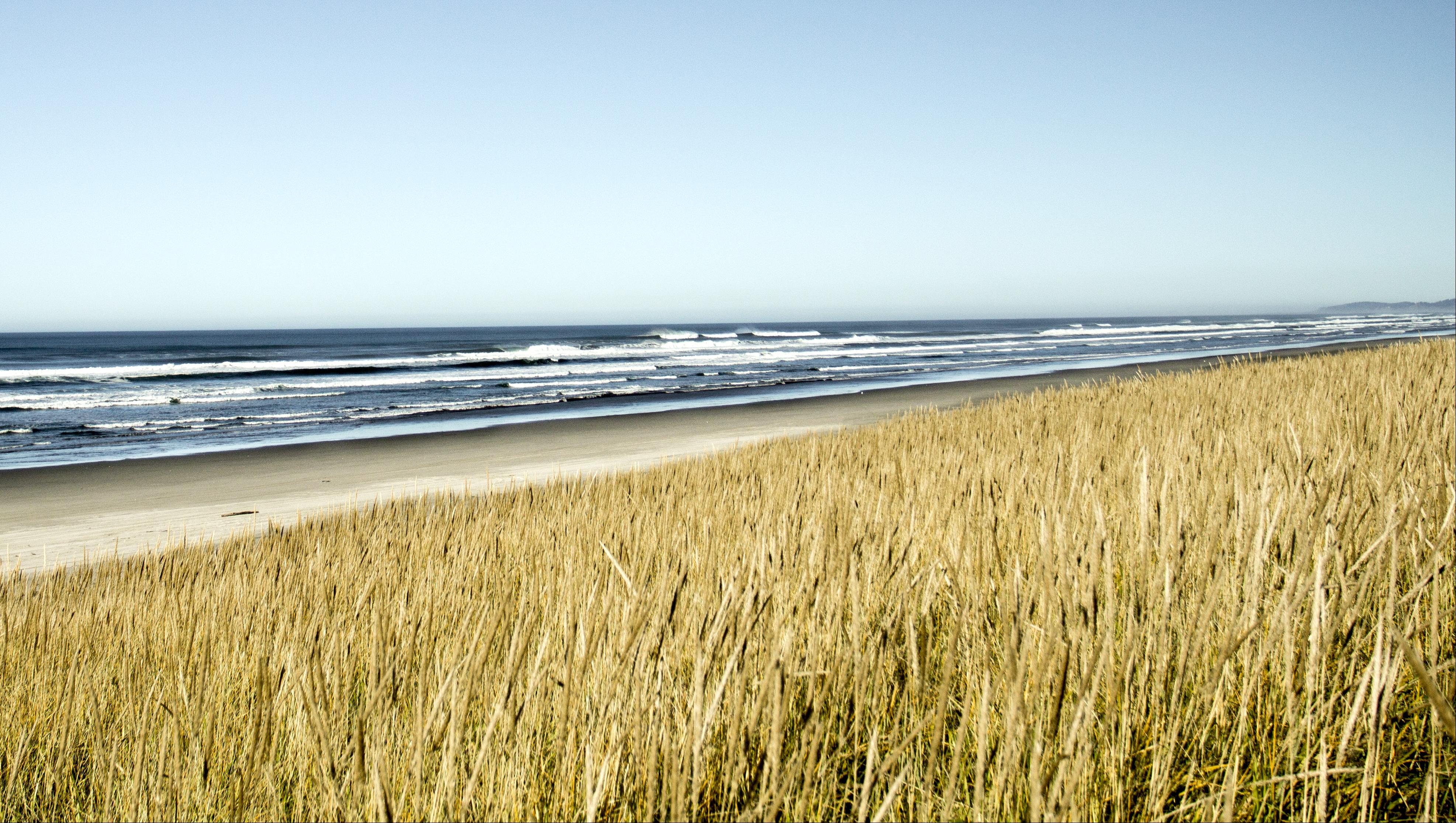 Sunset Beach, Oregon, Bay, Beach, Coast, Grass, HQ Photo
