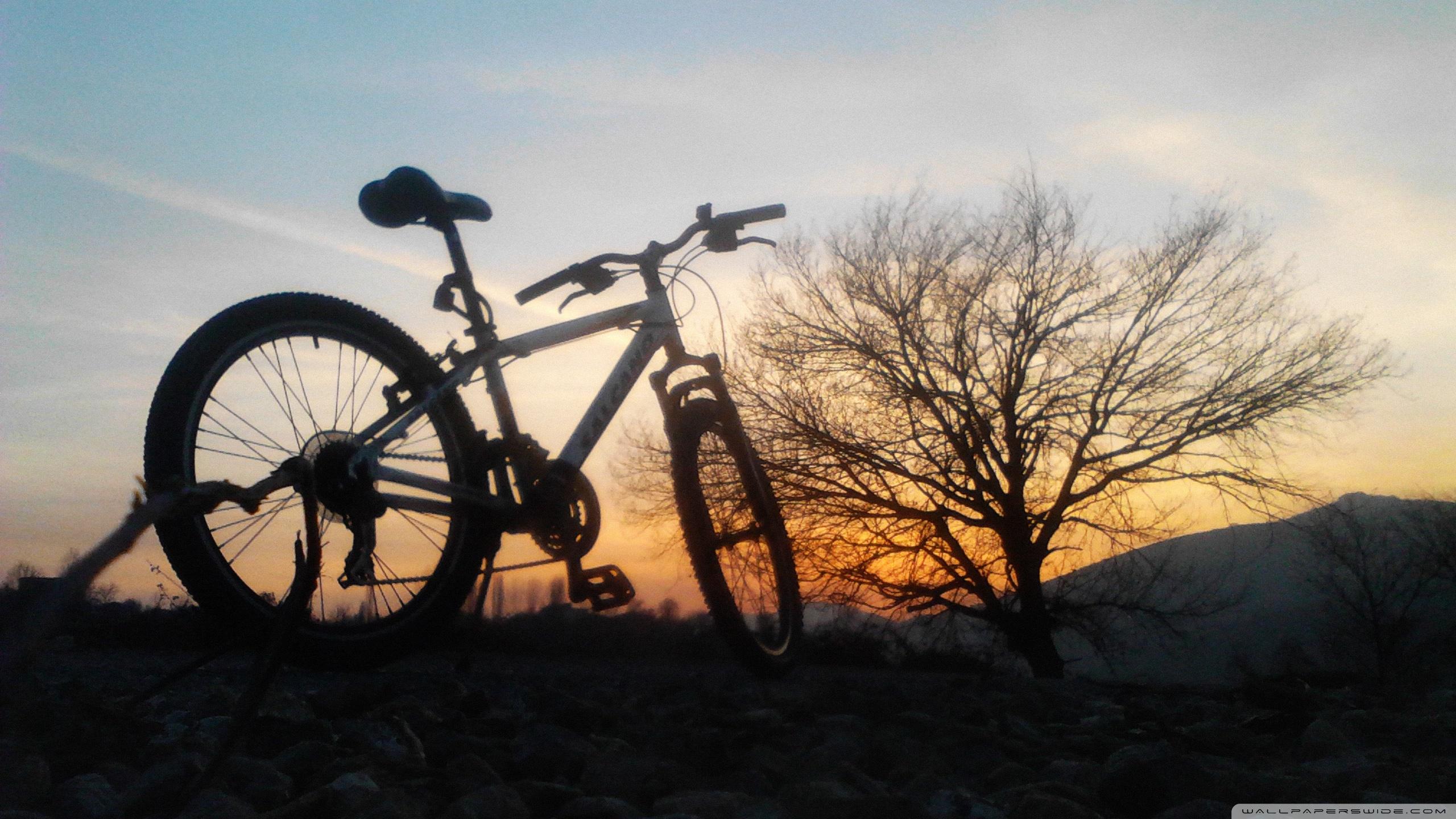 Bike and Sunset ❤ 4K HD Desktop Wallpaper for 4K Ultra HD TV