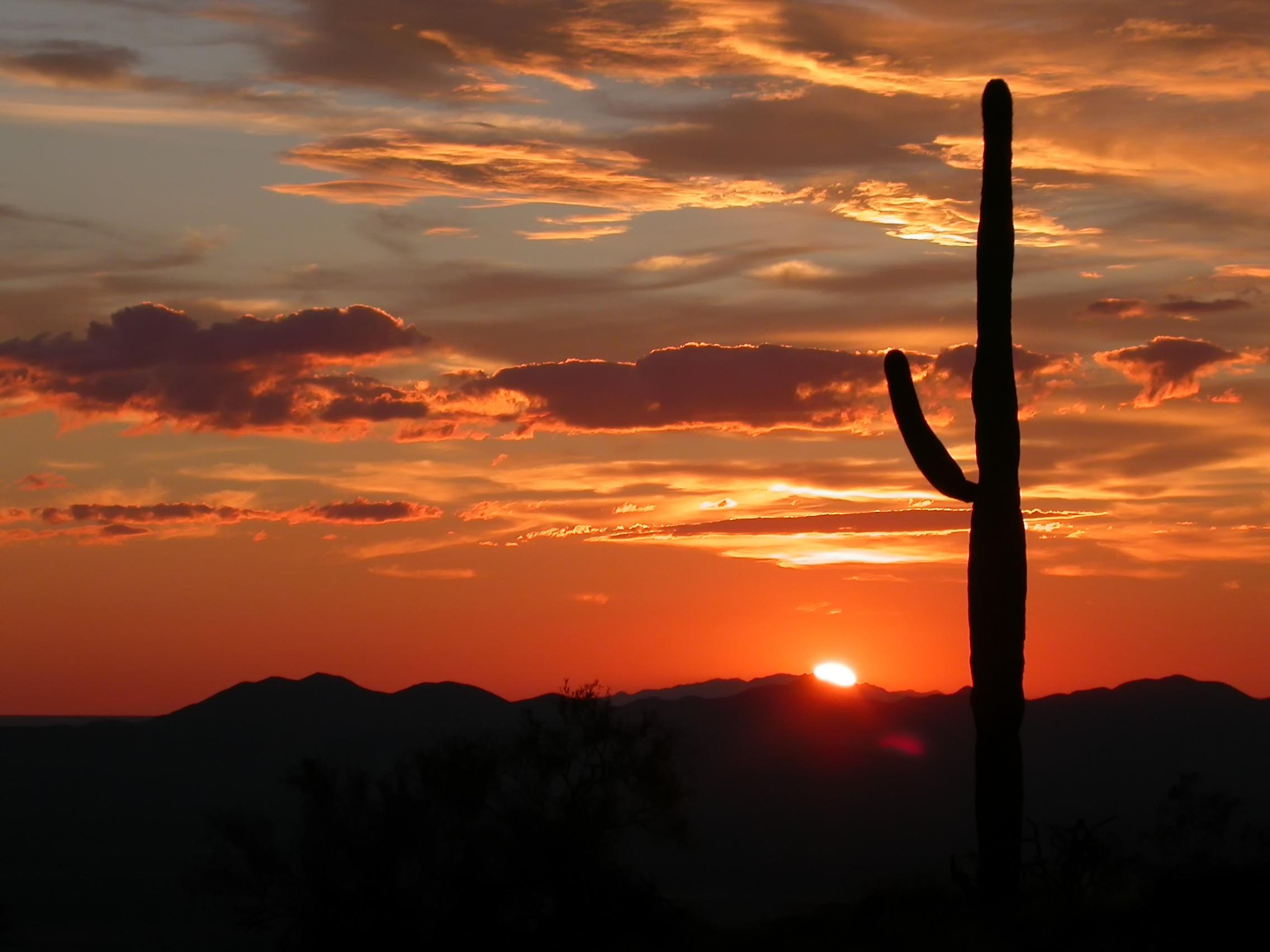 Sunset in arizona photo