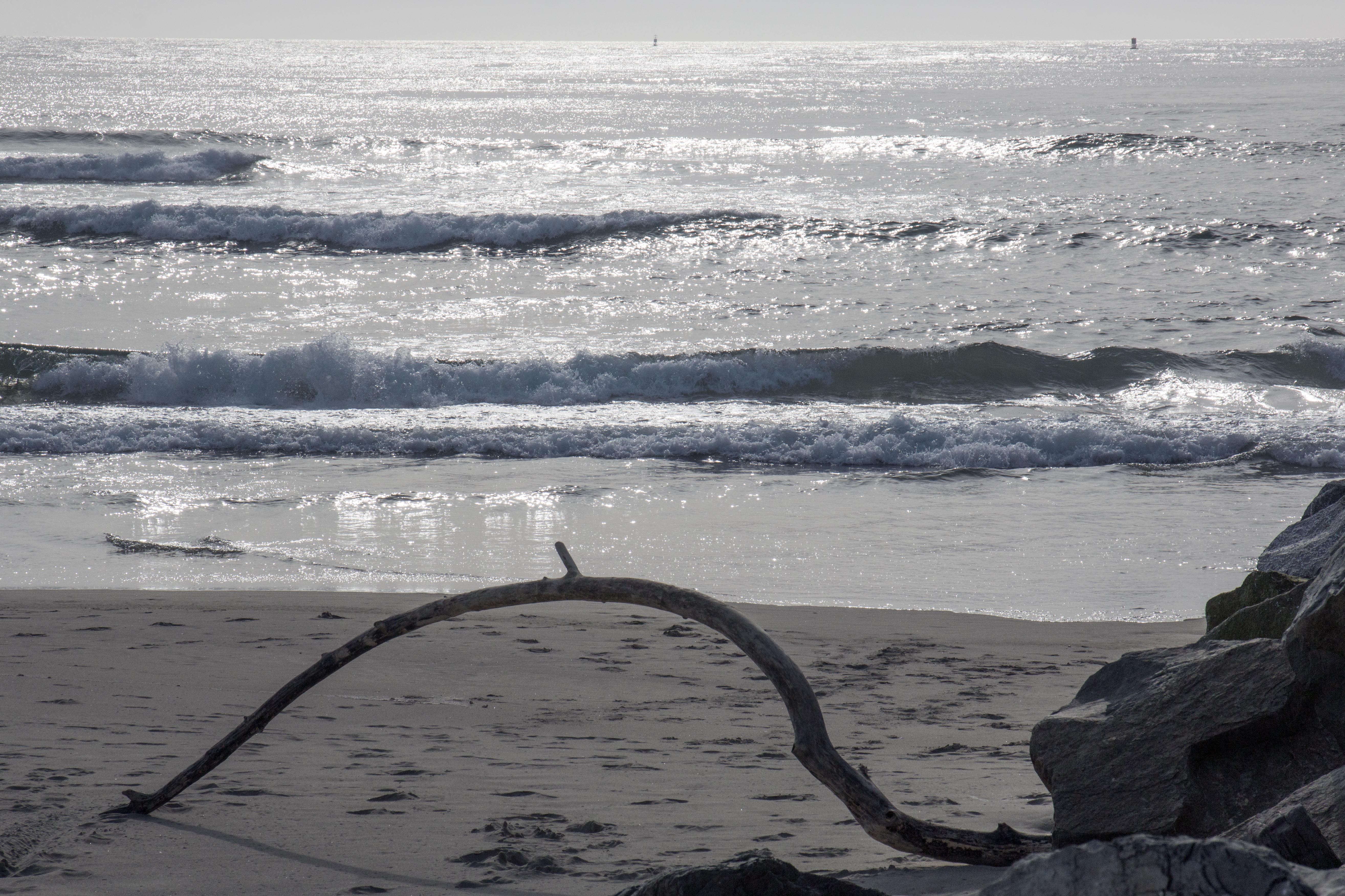 Sunset on oregon beach photo