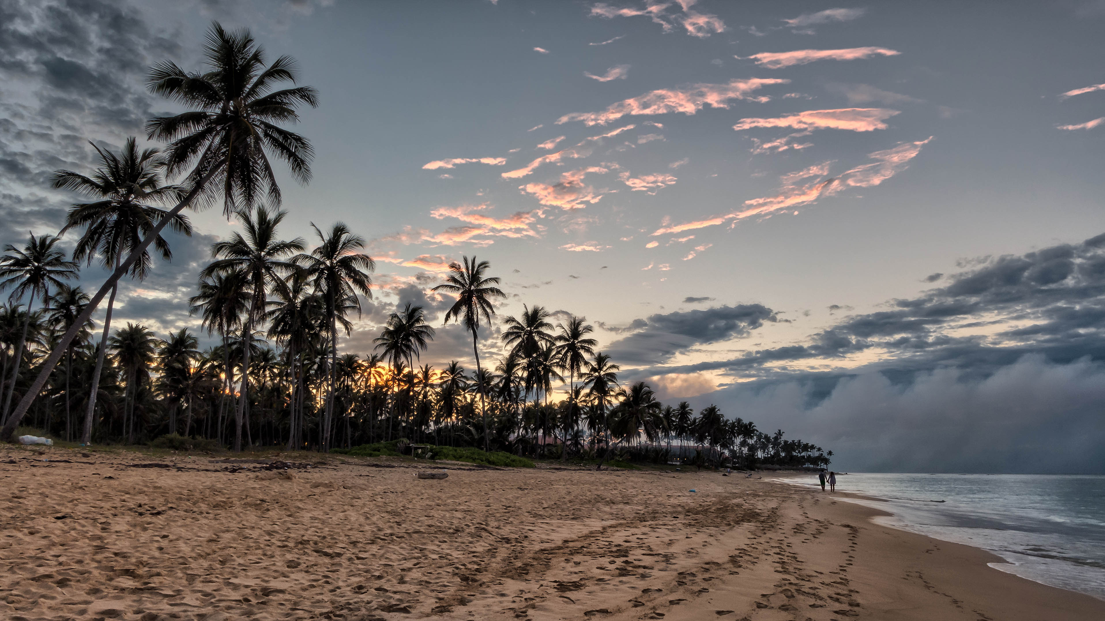 Sunset on the beach, Panasonic, Panasonic lumix dmc-lx7, Palm, Outdoor, HQ Photo