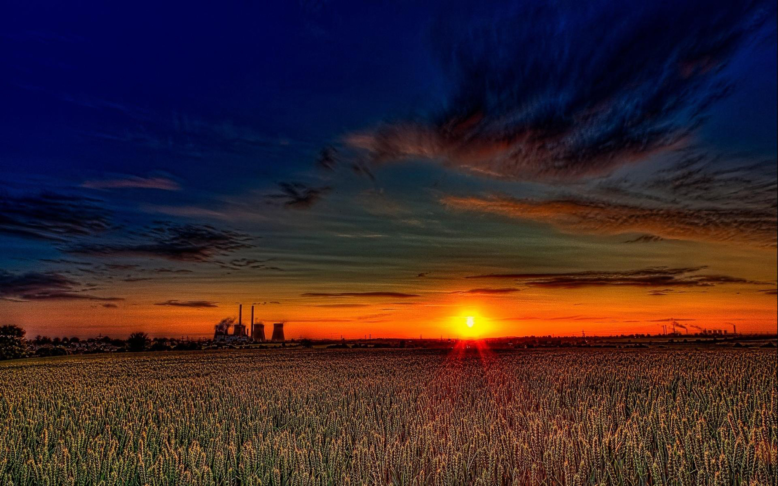 Beautiful Sunset Over Wheat Fields Hdr 1438167 : Wallpapers13.com