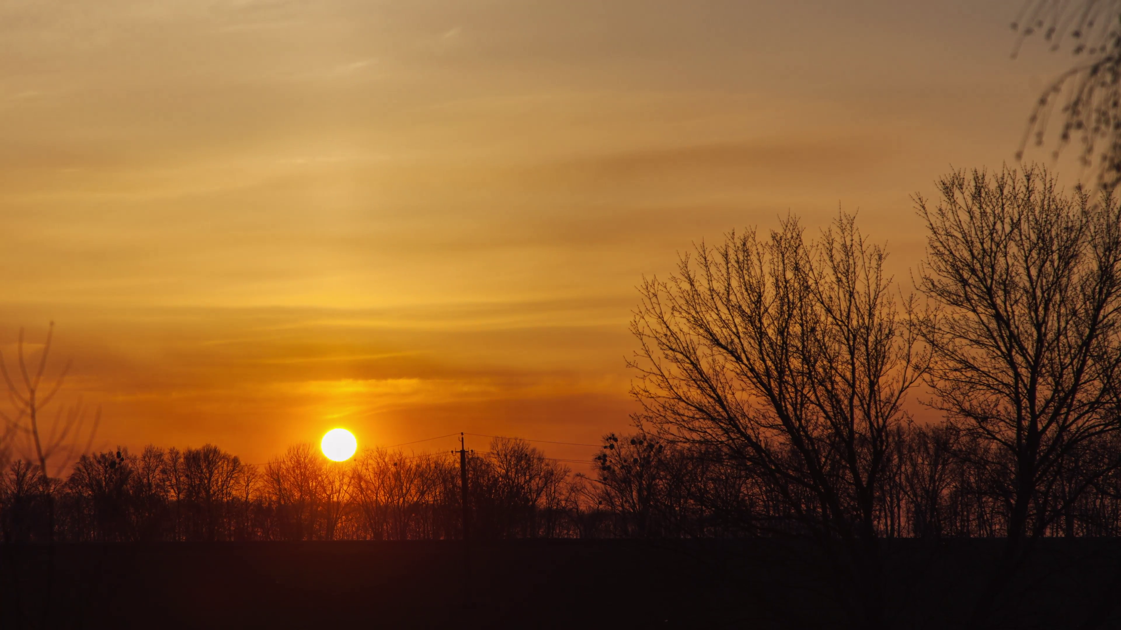 Sunset in the Trees in the Shade Stock Video Footage - Videoblocks