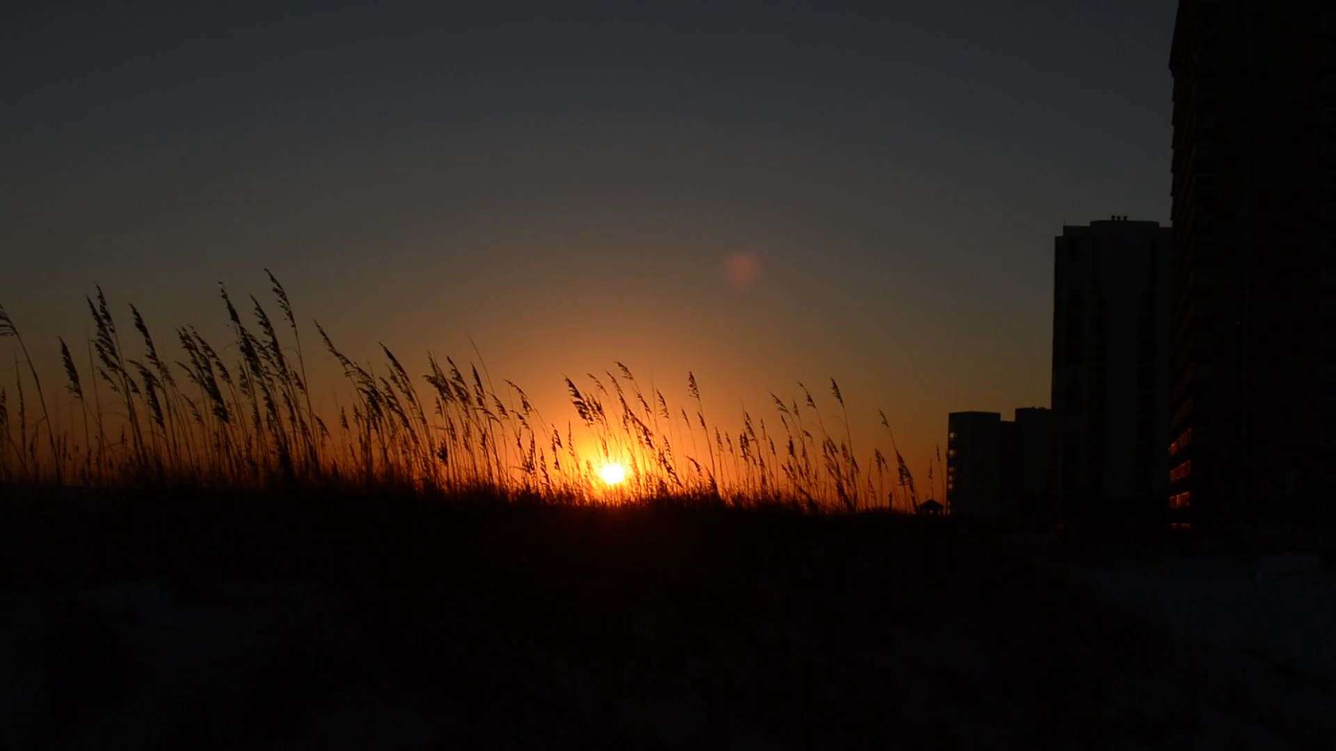Sunset Through Grass Stock Video Footage - VideoBlocks